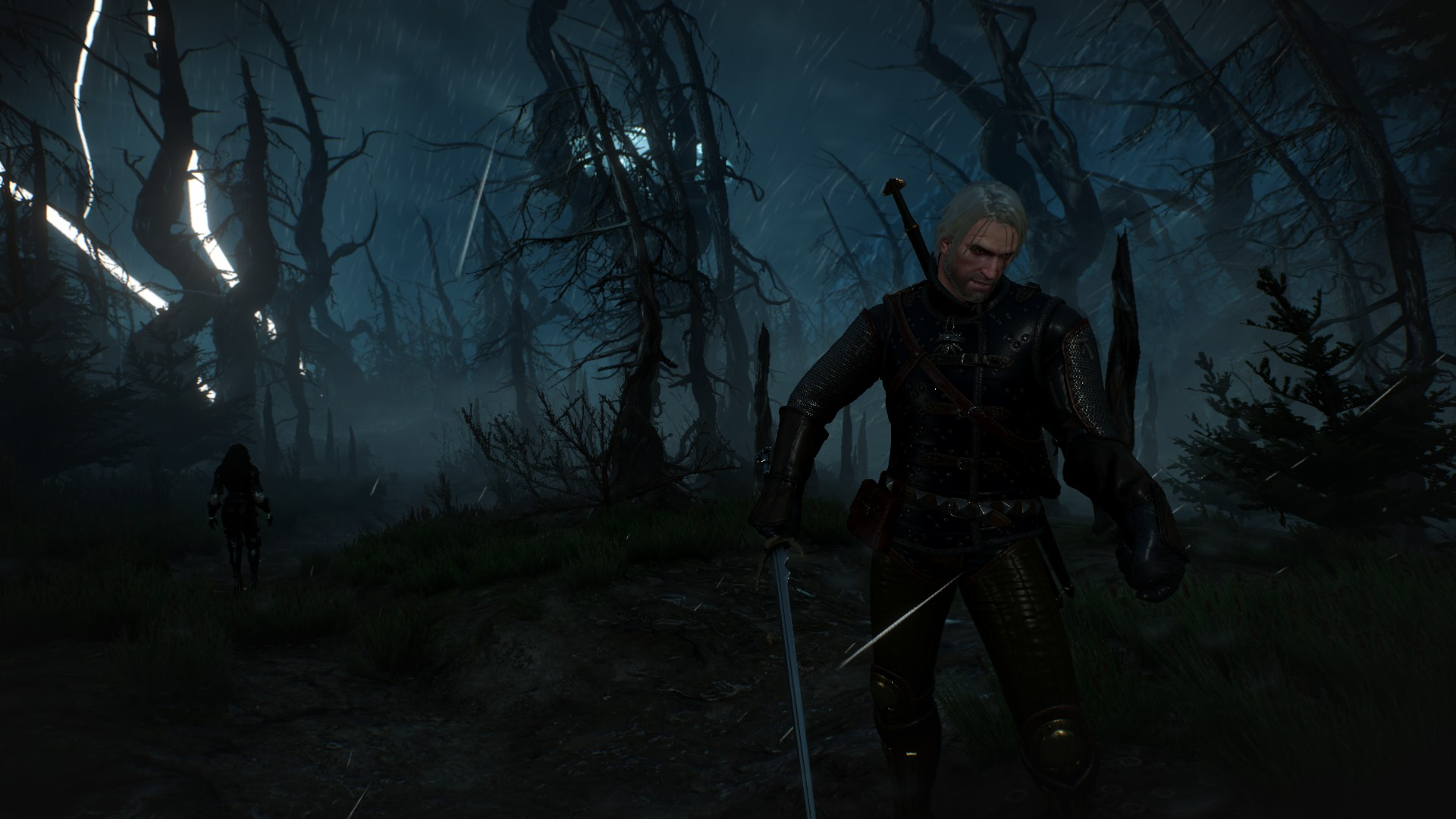 The Witcher 3 Screenshot 2019.02.05 - 13.10.32.51.jpg - Witcher 3: Wild Hunt, the