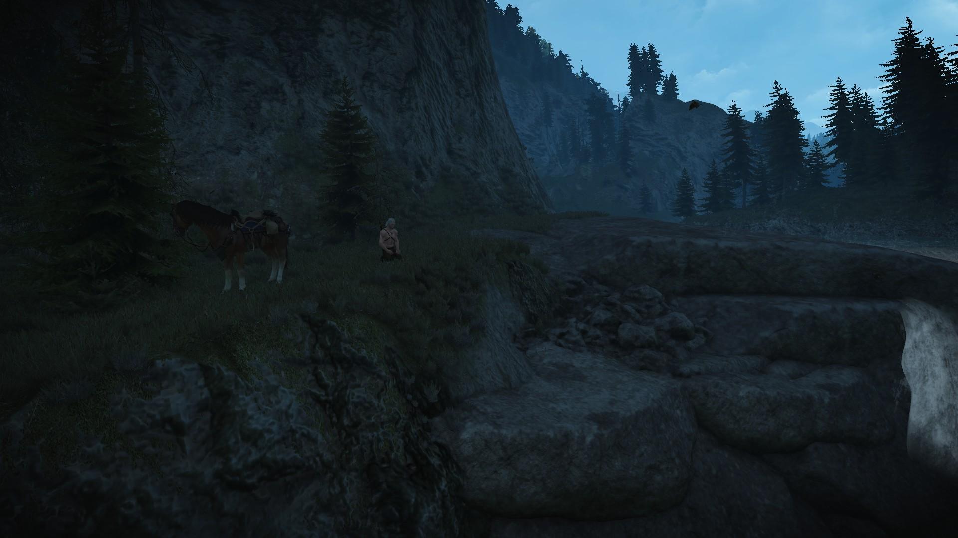 The Witcher 3 Screenshot 2019.02.10 - 20.56.15.43.jpg - Witcher 3: Wild Hunt, the