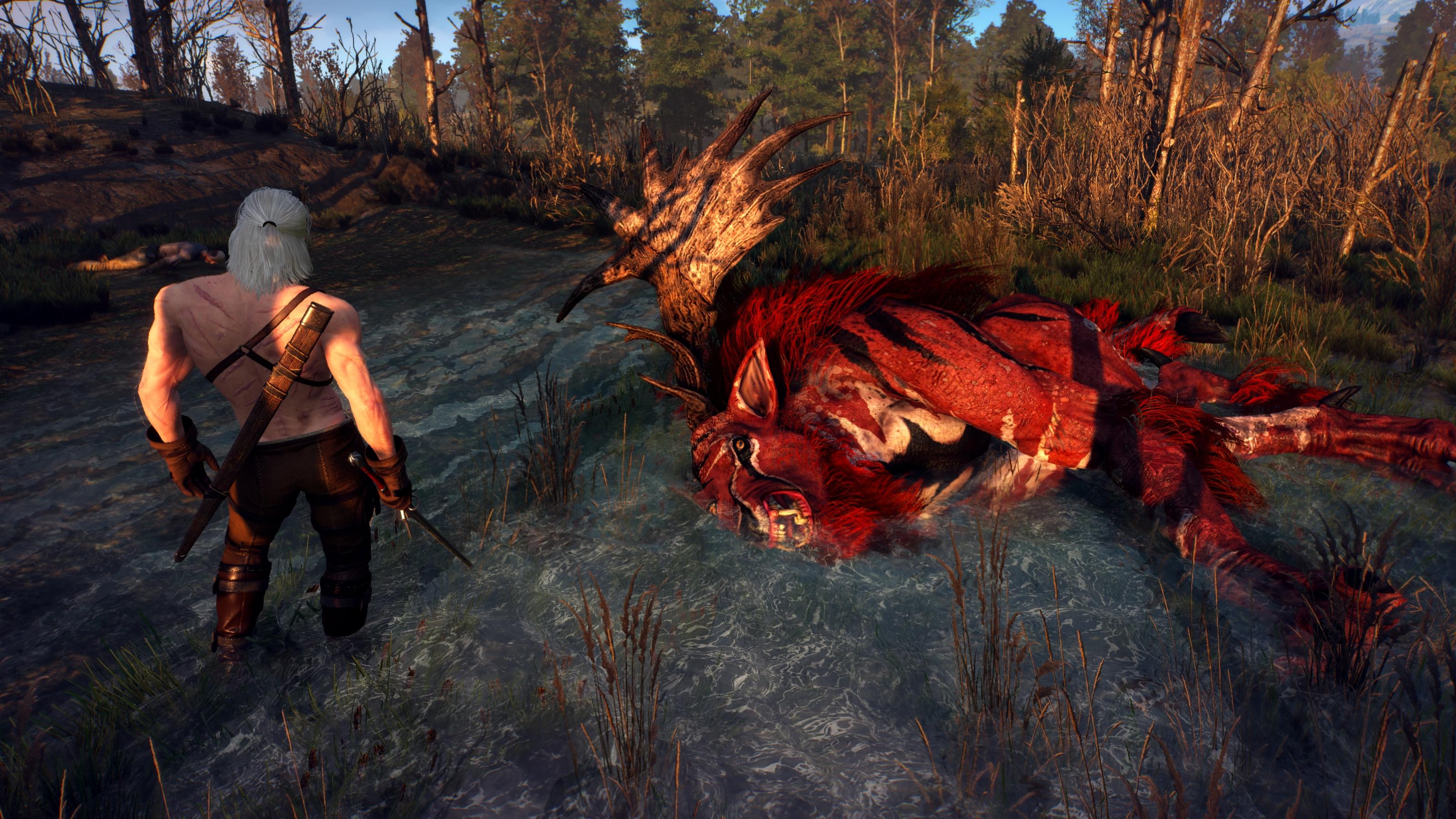 main - Witcher 3: Wild Hunt, the