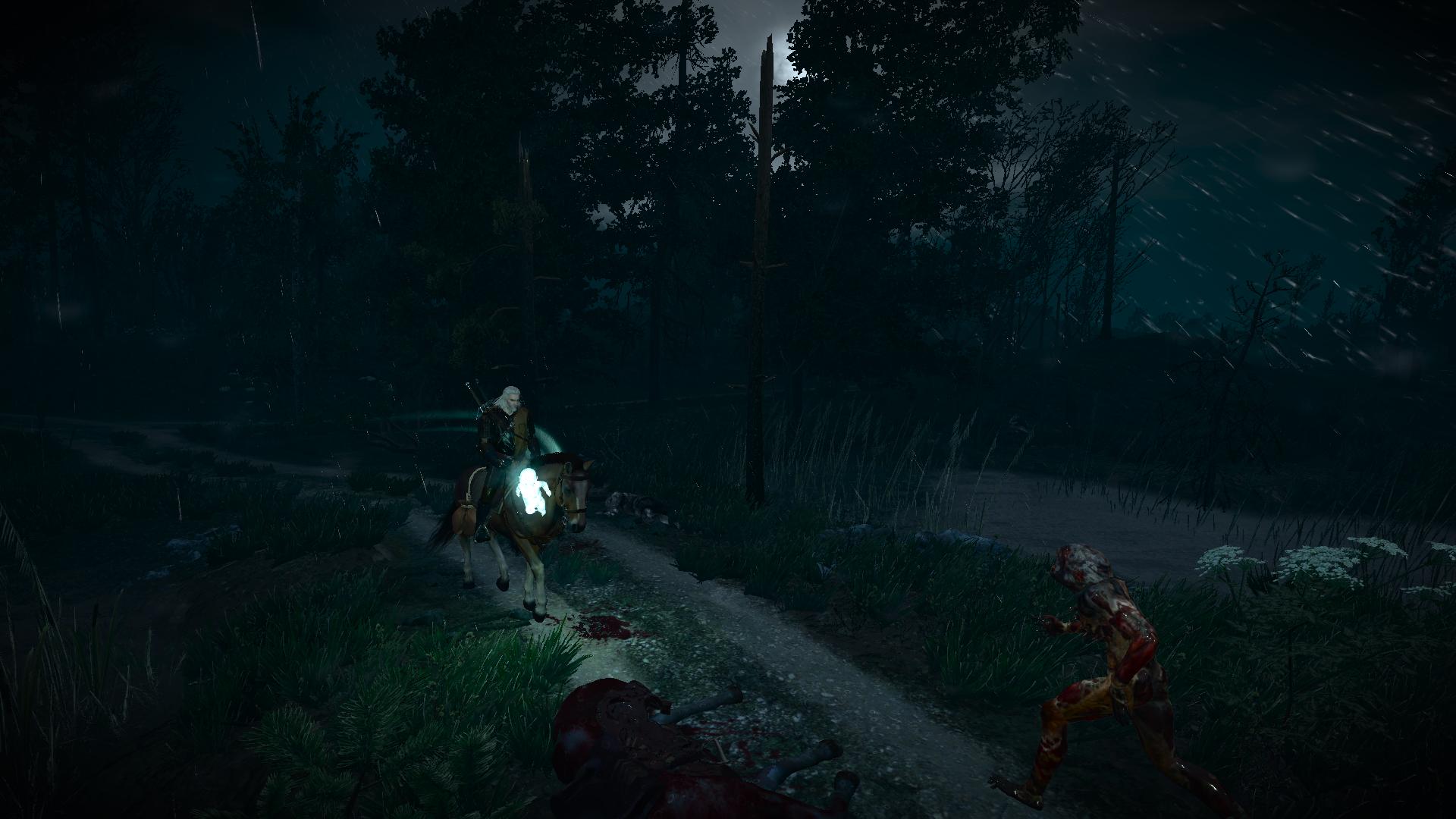 тяжелая дорога - Witcher 3: Wild Hunt, the