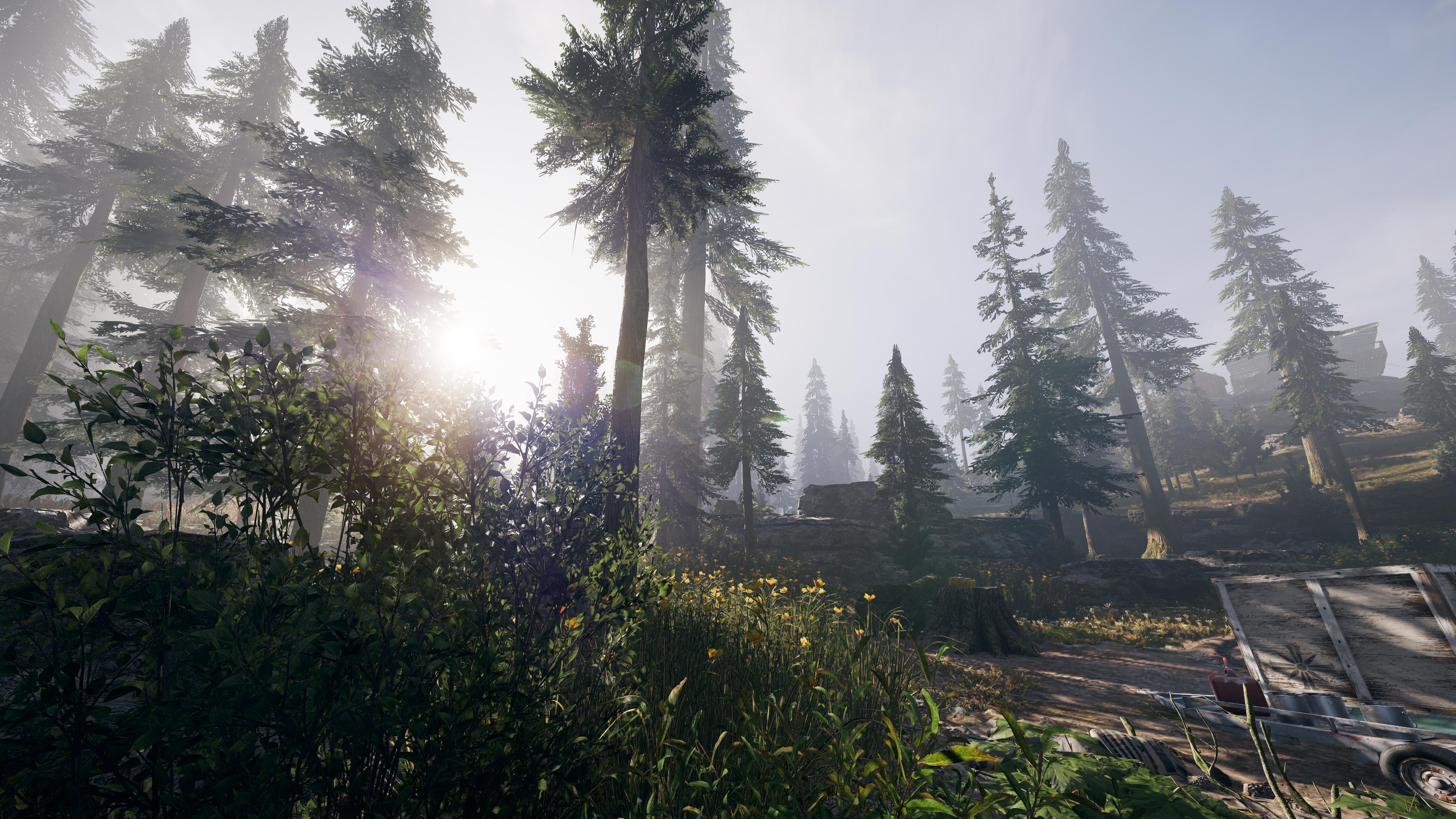 Far Cry 5 скриншот с GeForce RTX 2080 - Far Cry 5