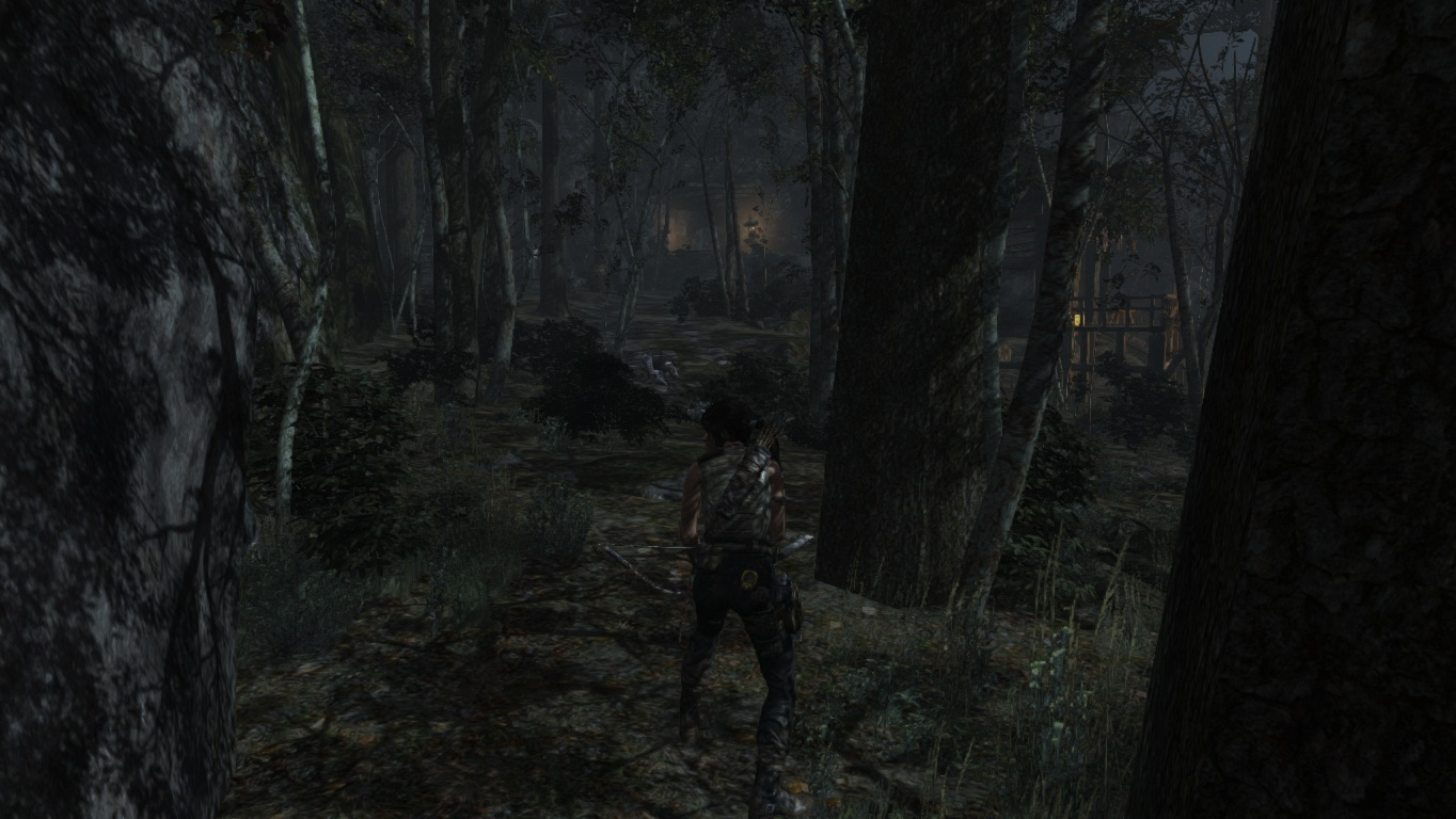 TombRaider 2019-03-24 18-18-00-19.jpg - Tomb Raider (2013)