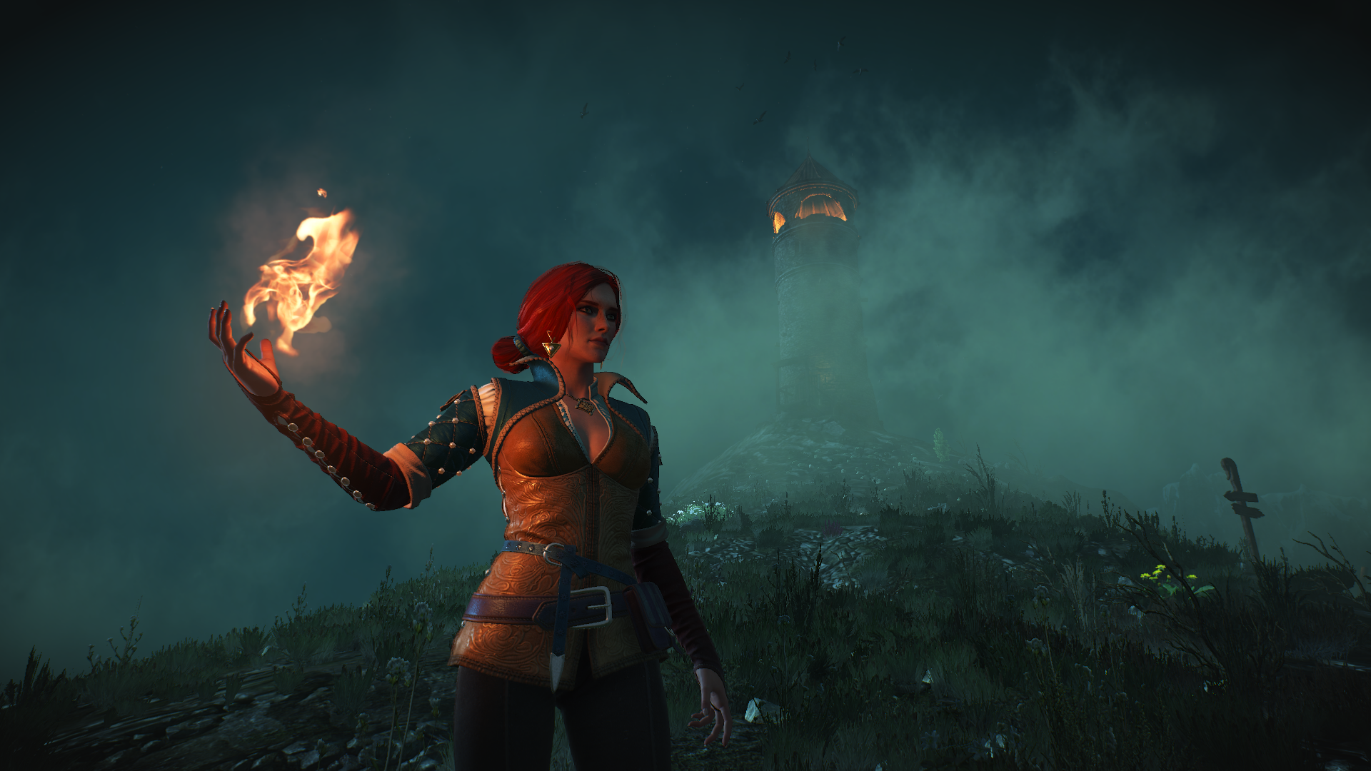 mKy7zLY.png - Witcher 3: Wild Hunt, the