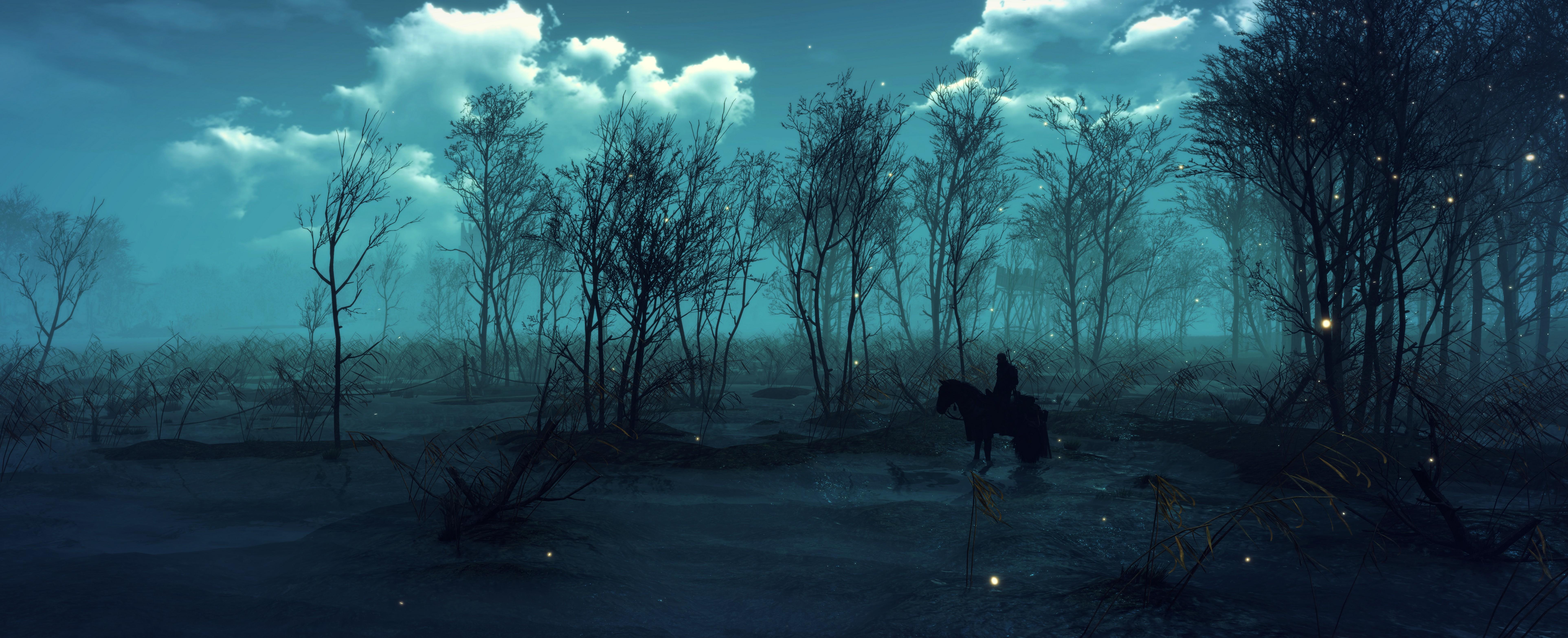 =_= - Witcher 3: Wild Hunt, the