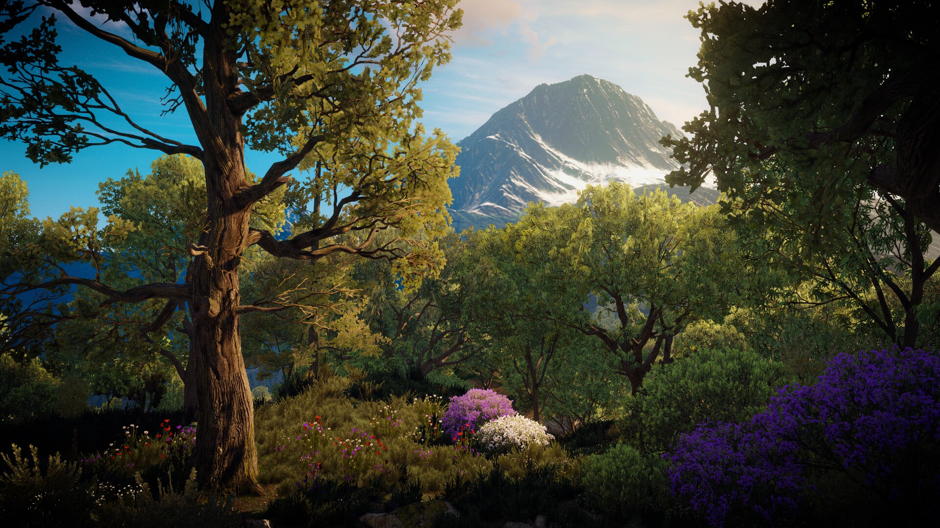 =_= - Witcher 3: Wild Hunt, the