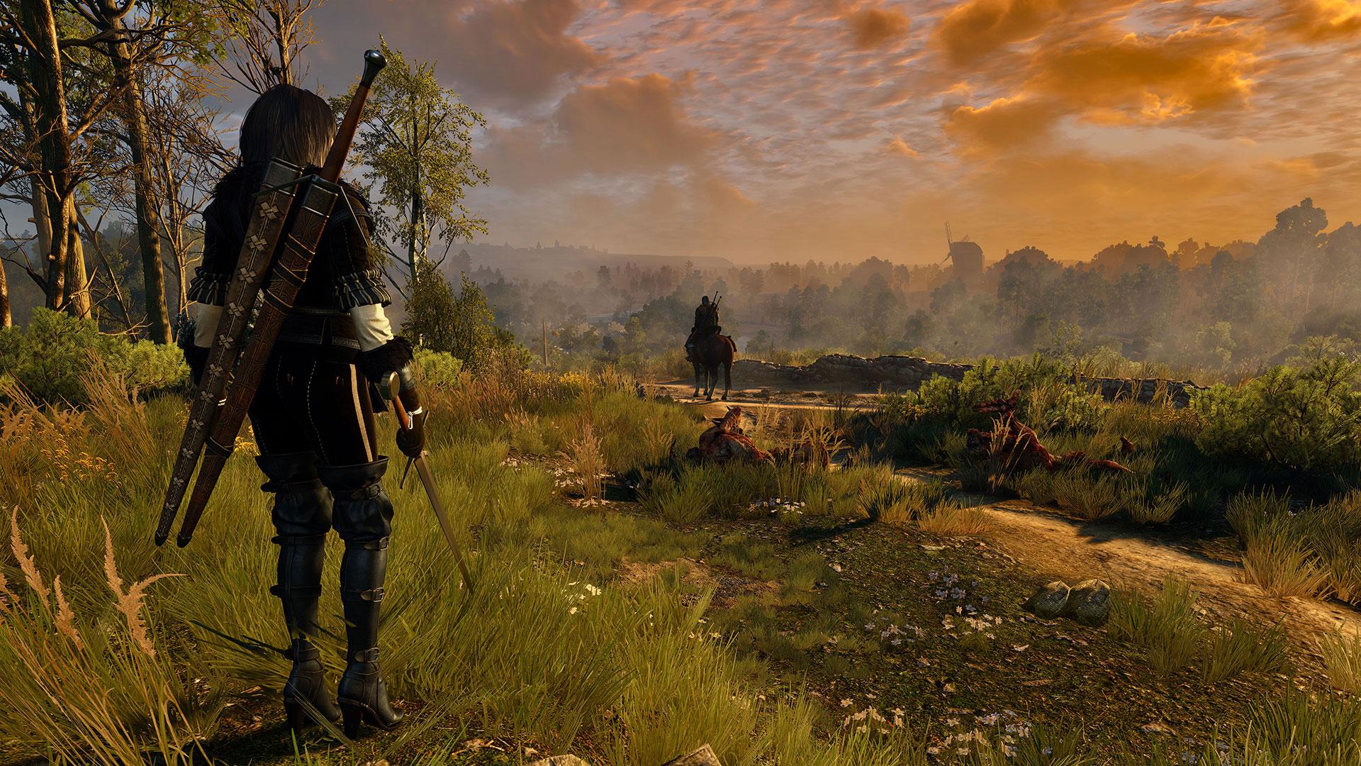 20799feb11c558114de5efdef0aaefc6.jpg - Witcher 3: Wild Hunt, the