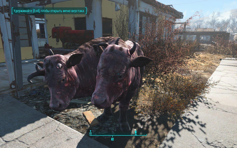 Смотрит - Fallout 4