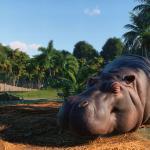 Planet Zoo Геймплей