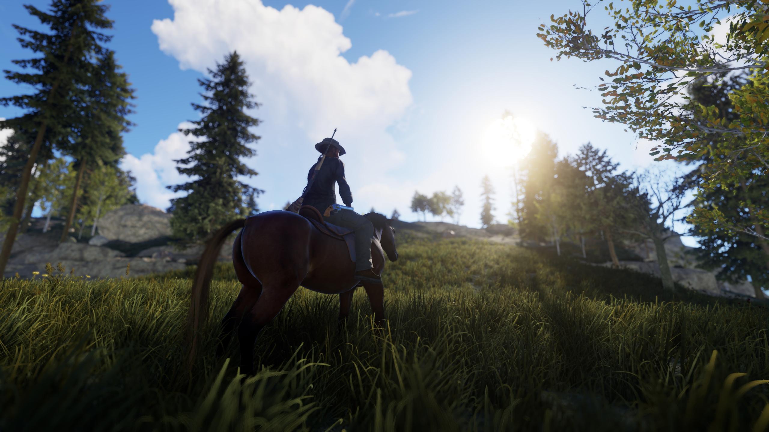 На лошади - Rust