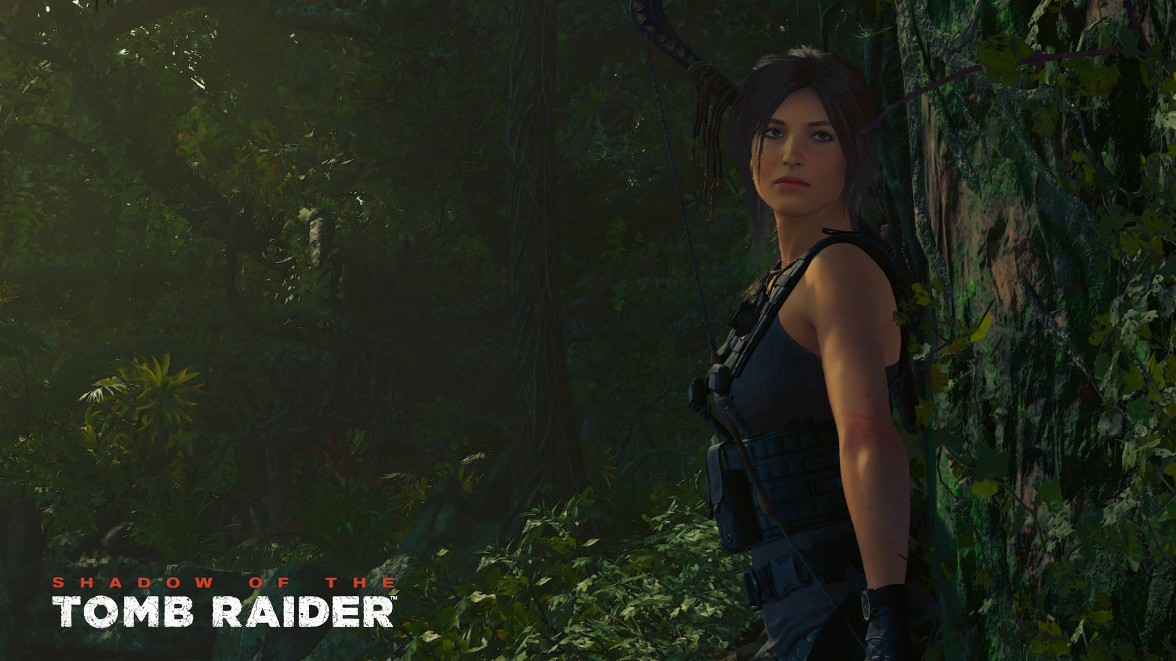 Shadow of the Tomb Raider скриншот 4k ultra graphics Nvidia GeForce RTX 2080 - Shadow of the Tomb Raider