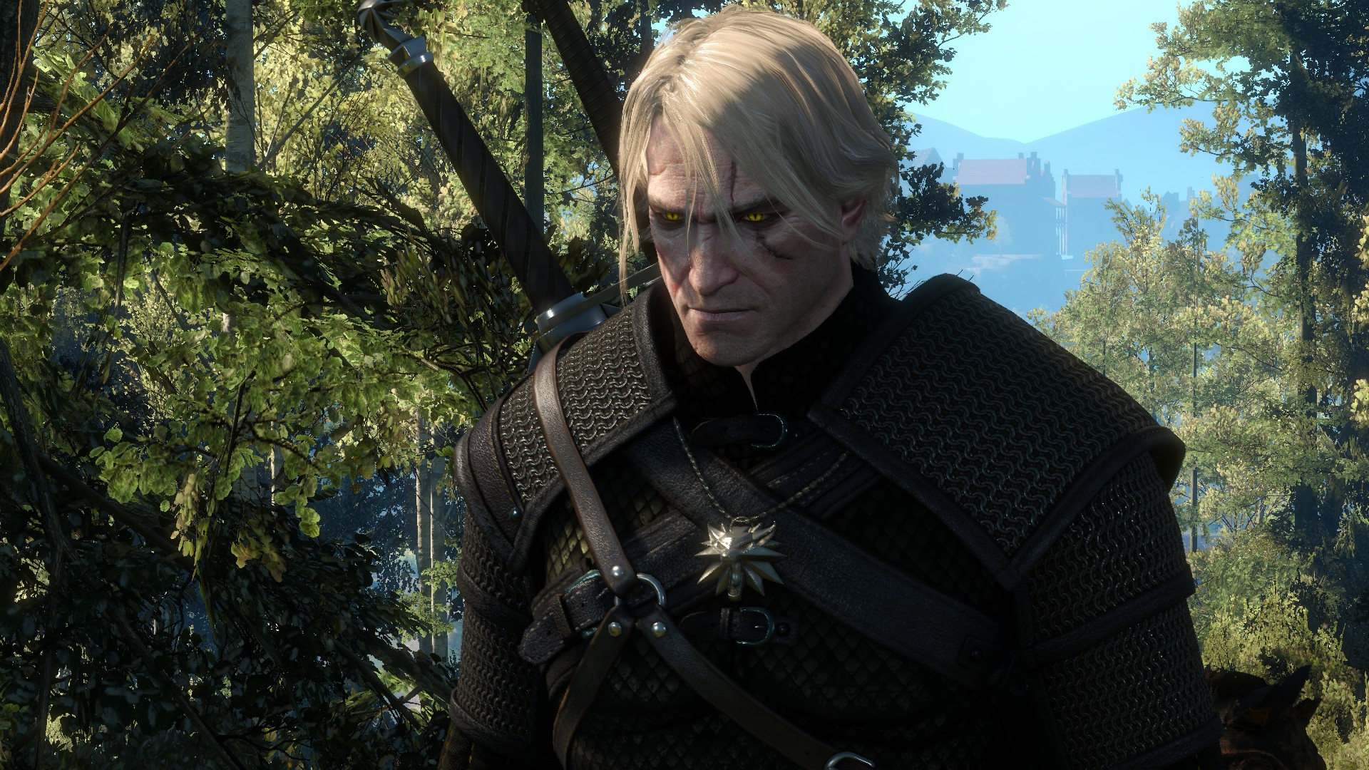 Ger - Witcher 3: Wild Hunt, the