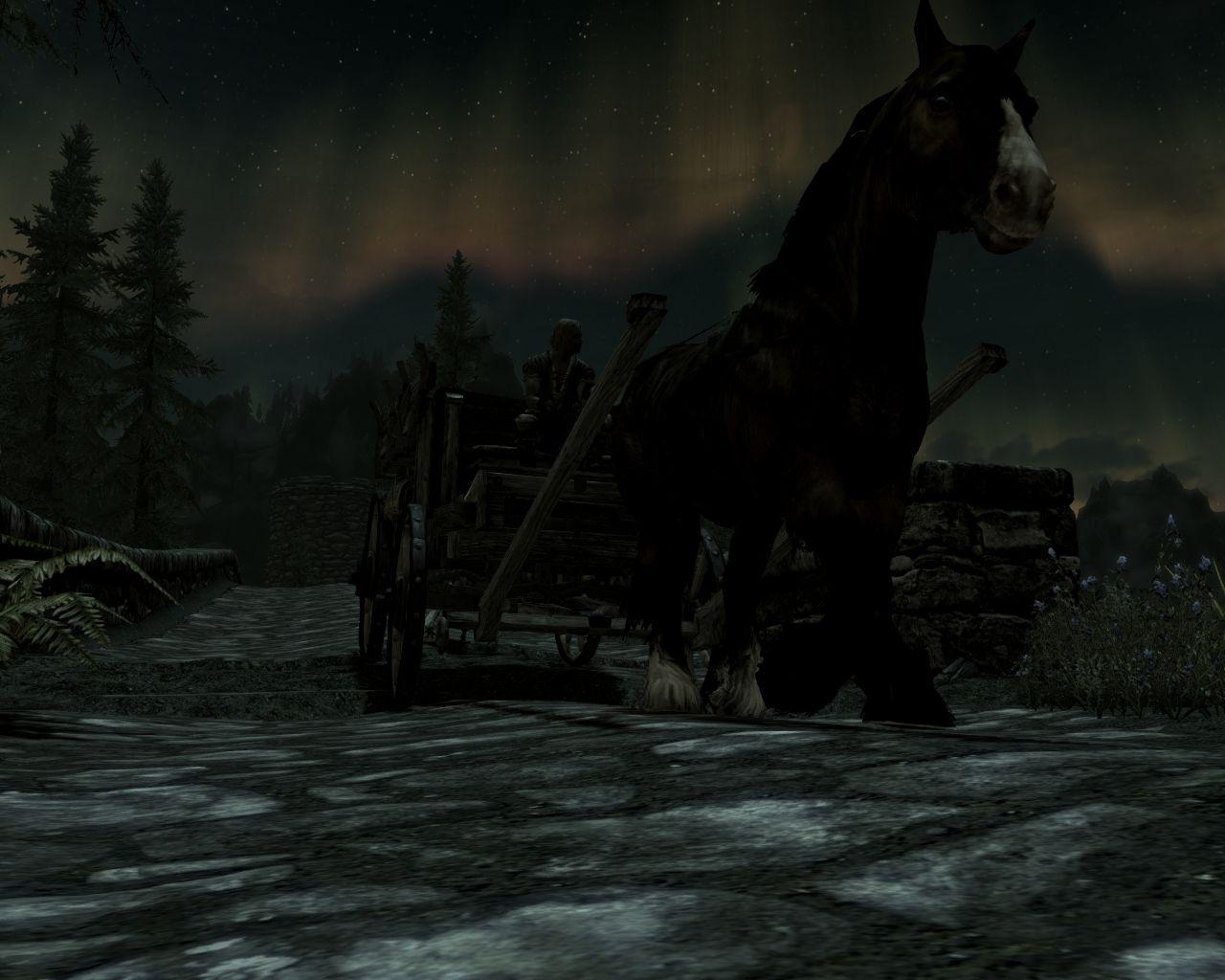 ScreenShot58.jpg - Elder Scrolls 5: Skyrim, the
