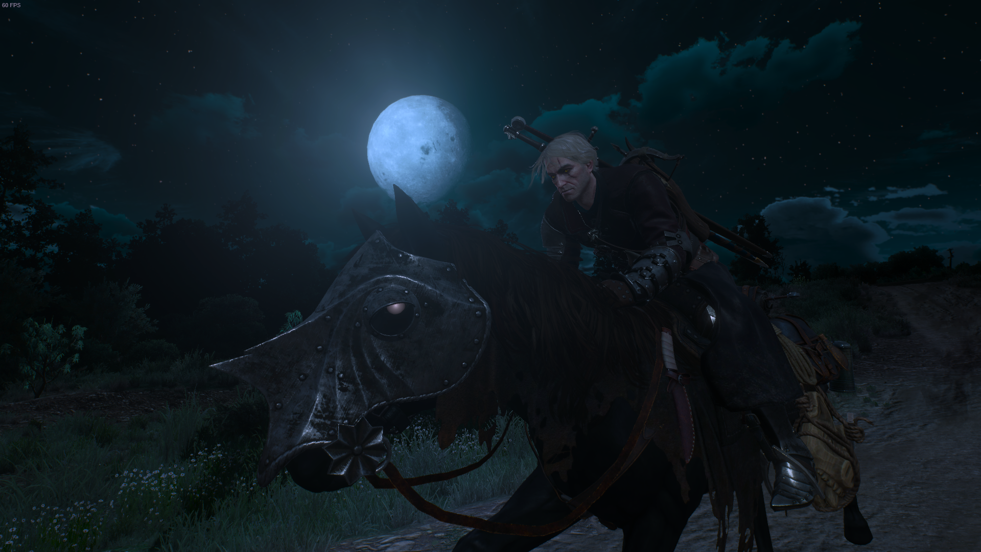 Ger - The Witcher 3: Wild Hunt