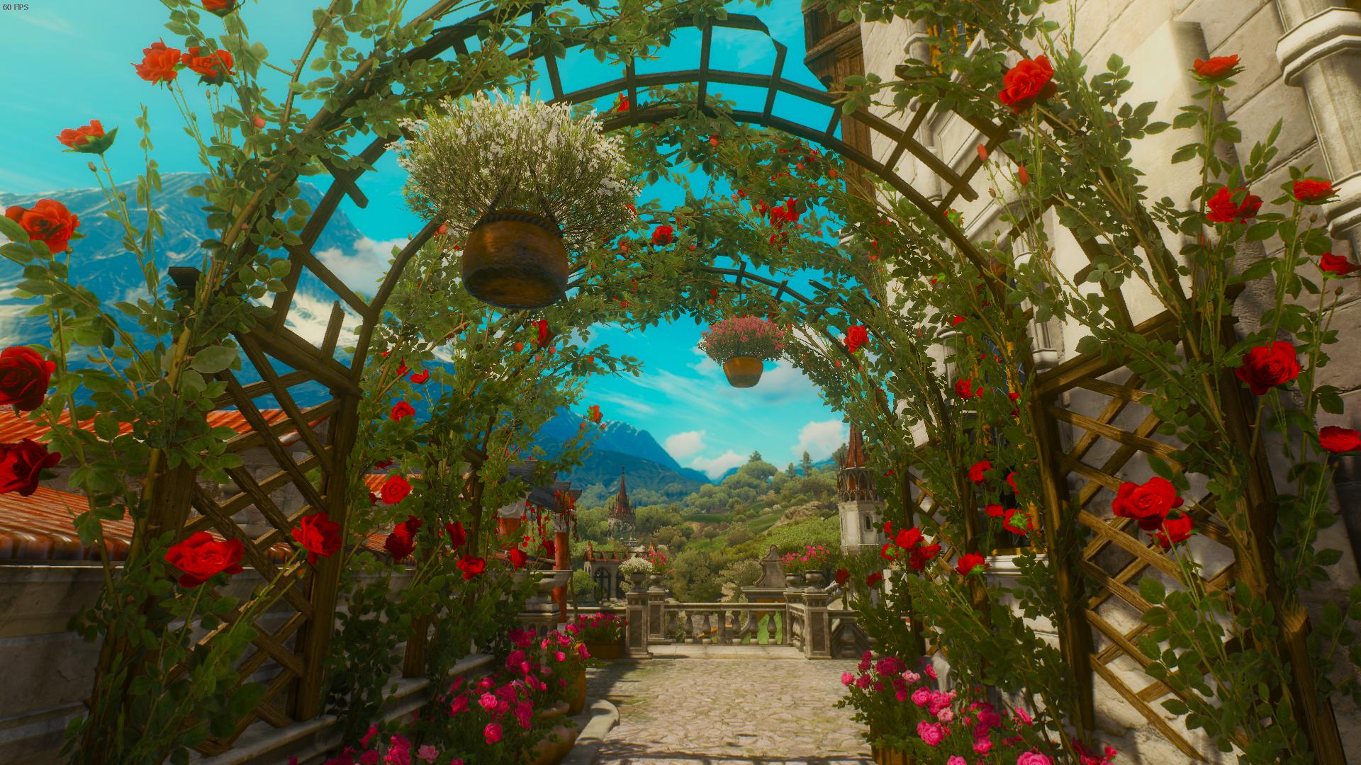 Oran - Witcher 3: Wild Hunt, the