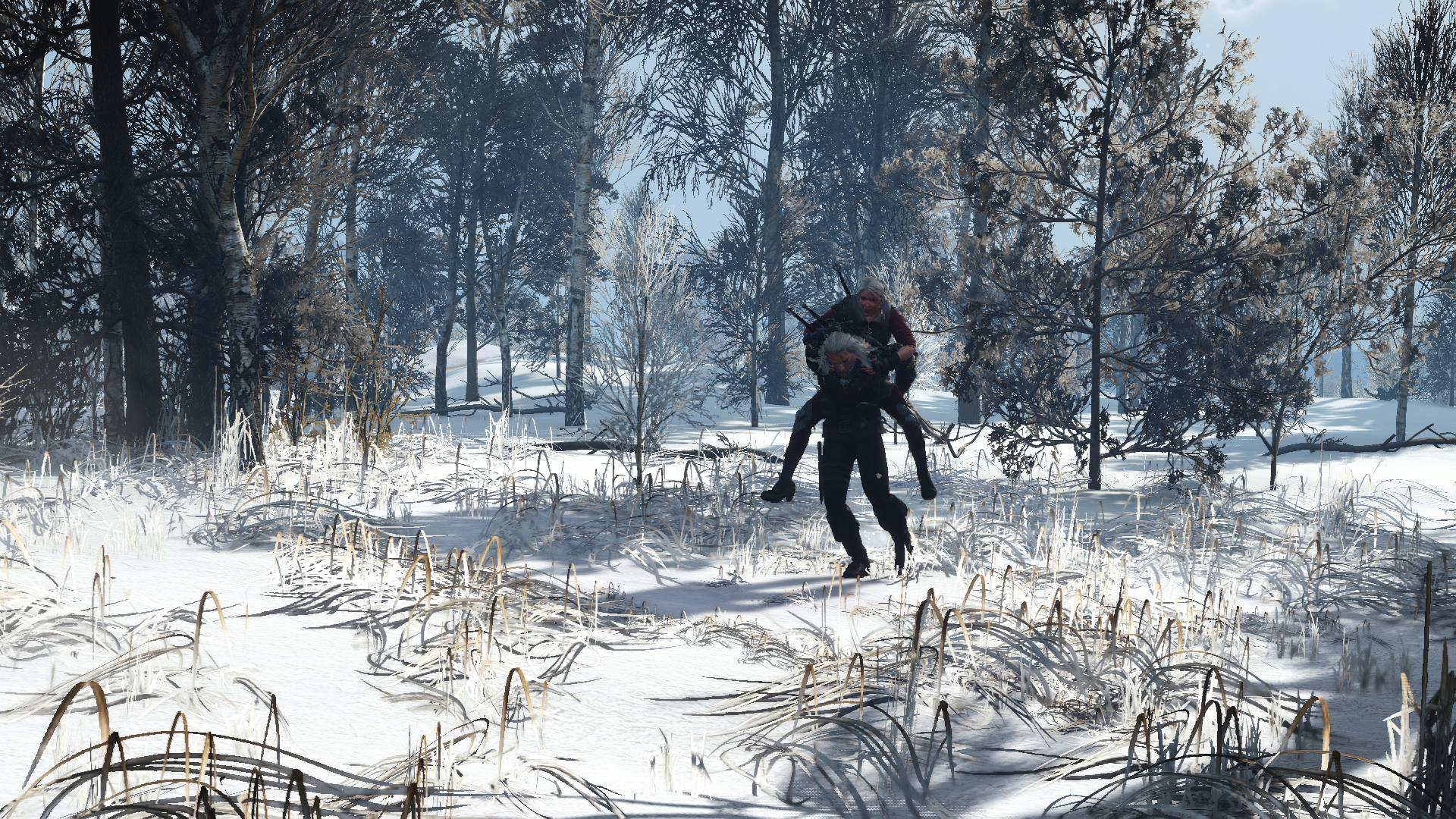The Witcher 3 18.08.2019 22_50_07.png - Witcher 3: Wild Hunt, the