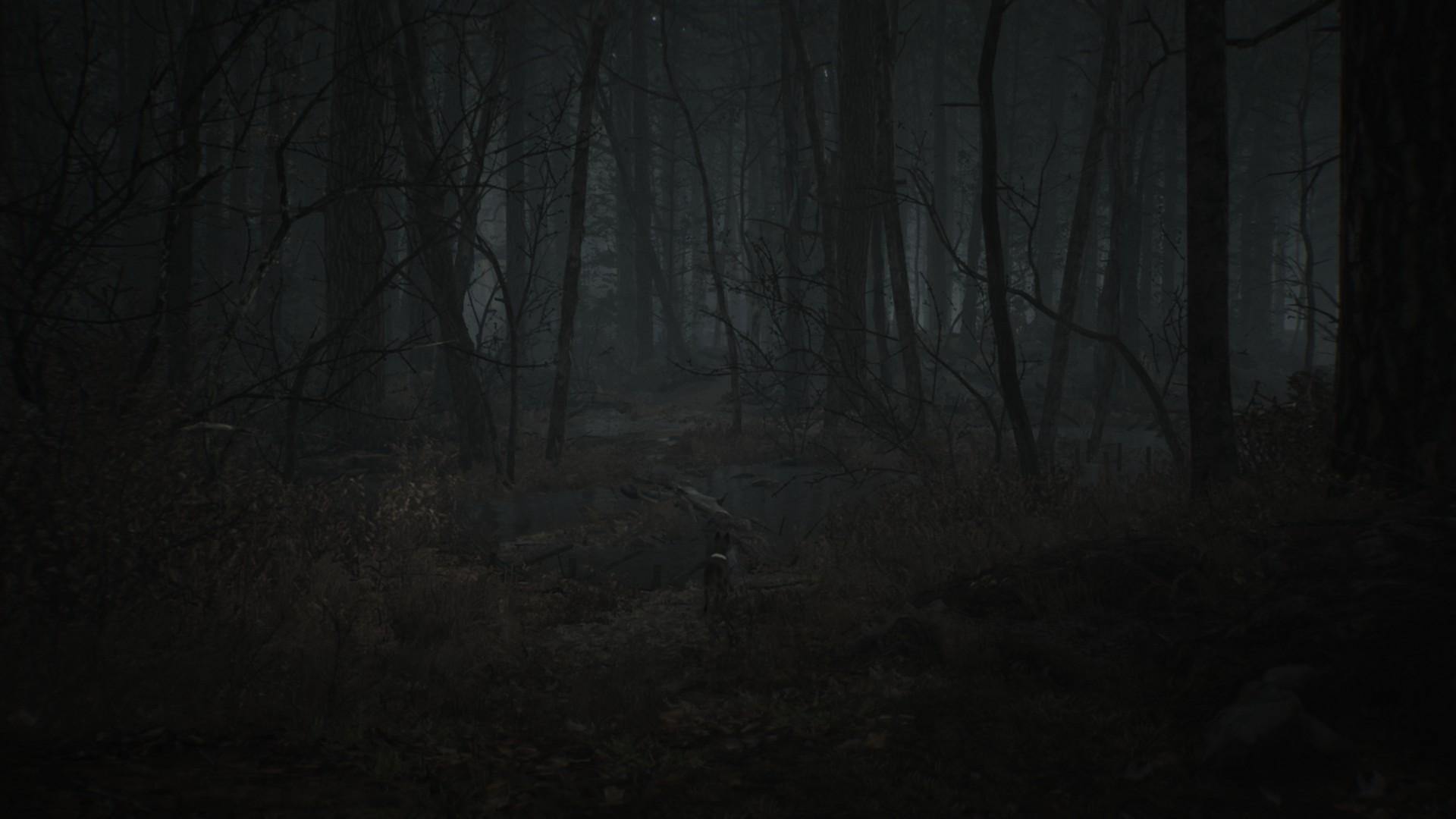 Геймплей - Blair Witch (2019)