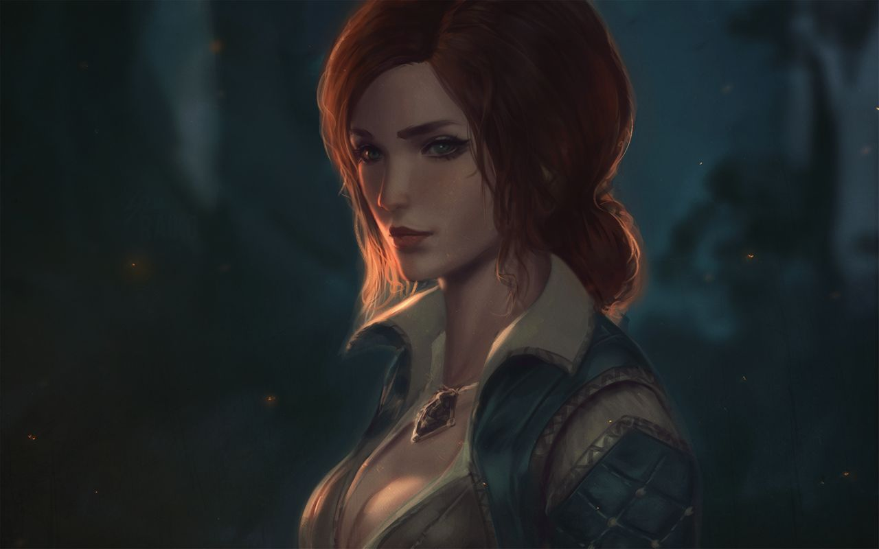 by raikoart - Witcher 3: Wild Hunt, the