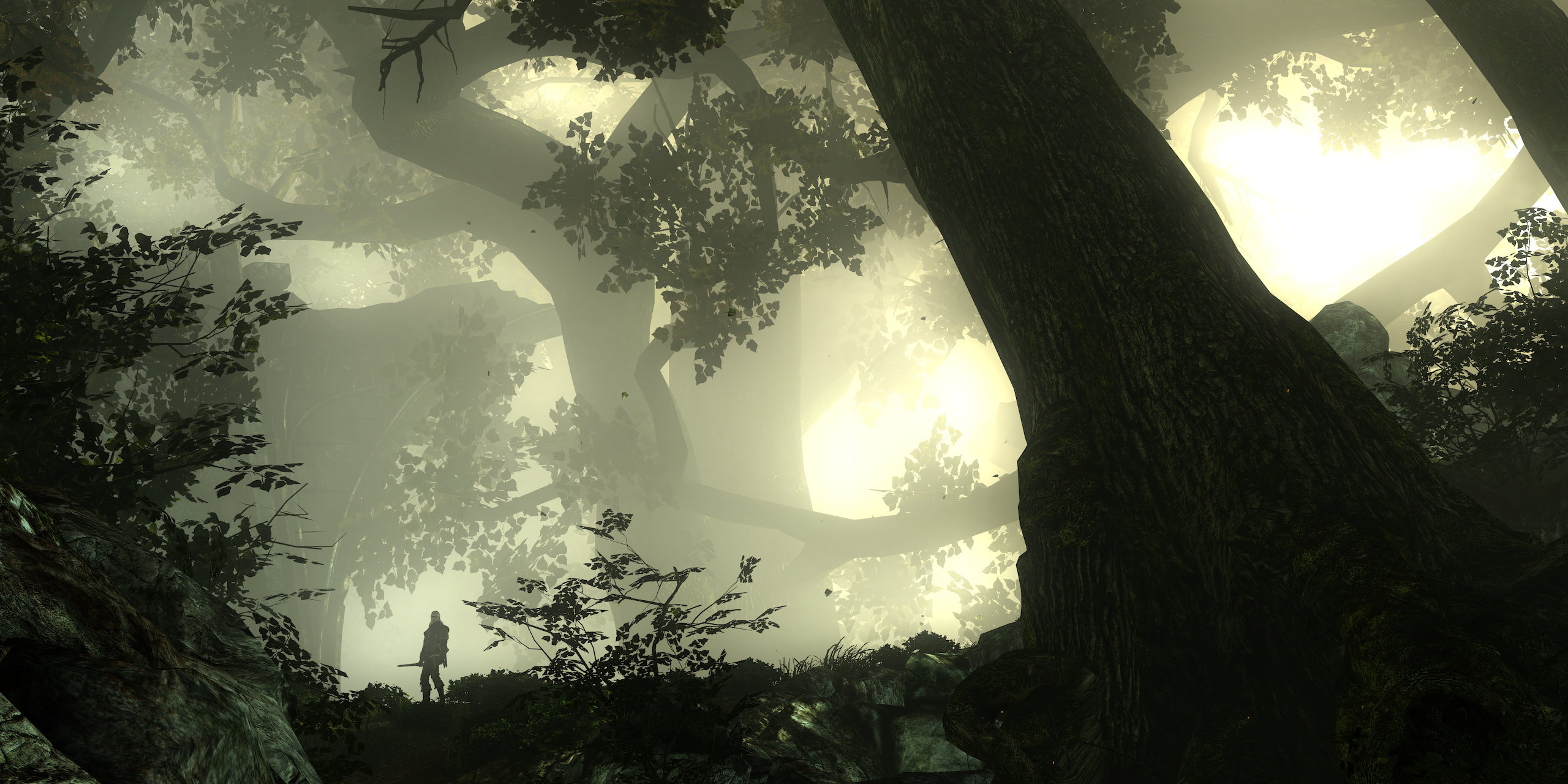 branchlines.png - Witcher 2: Assassins of Kings, the
