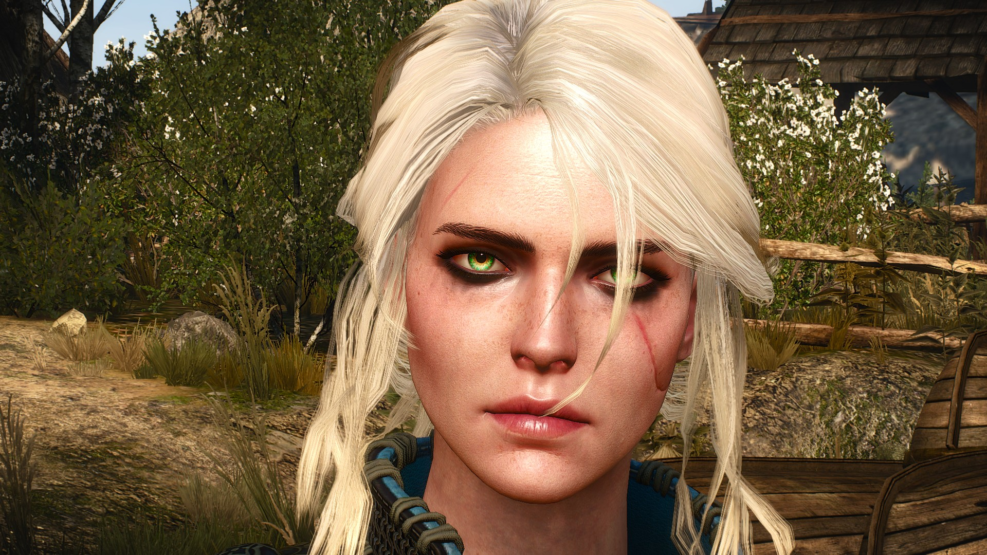 4K - Witcher 3: Wild Hunt, the