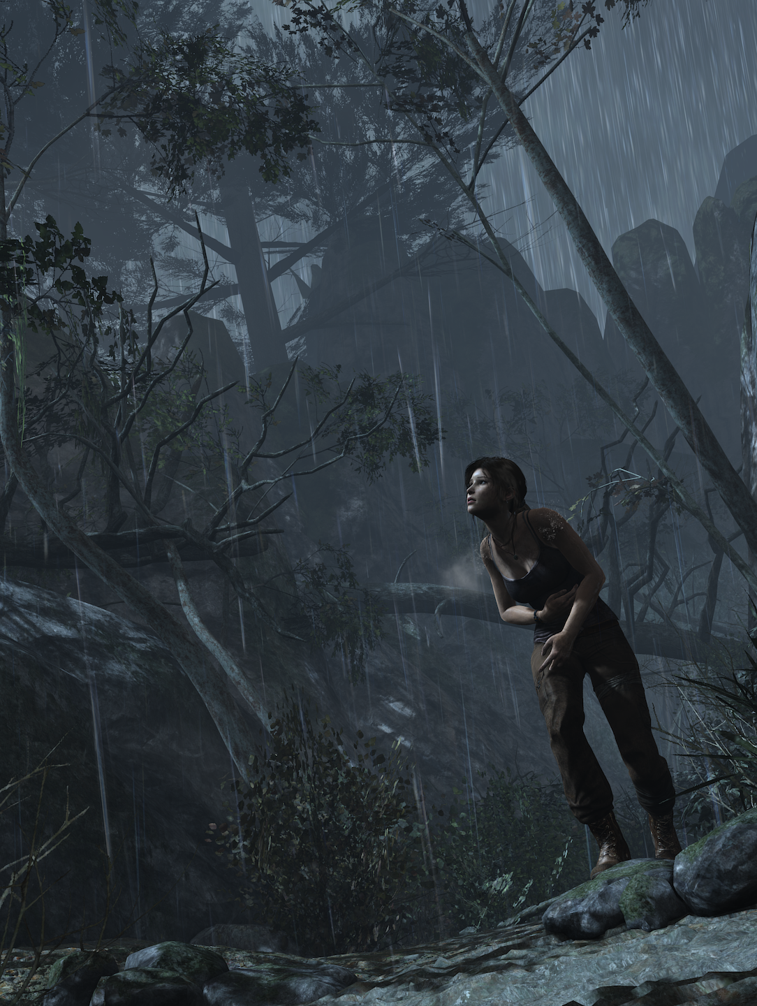 toextremes.png - Tomb Raider (2013)