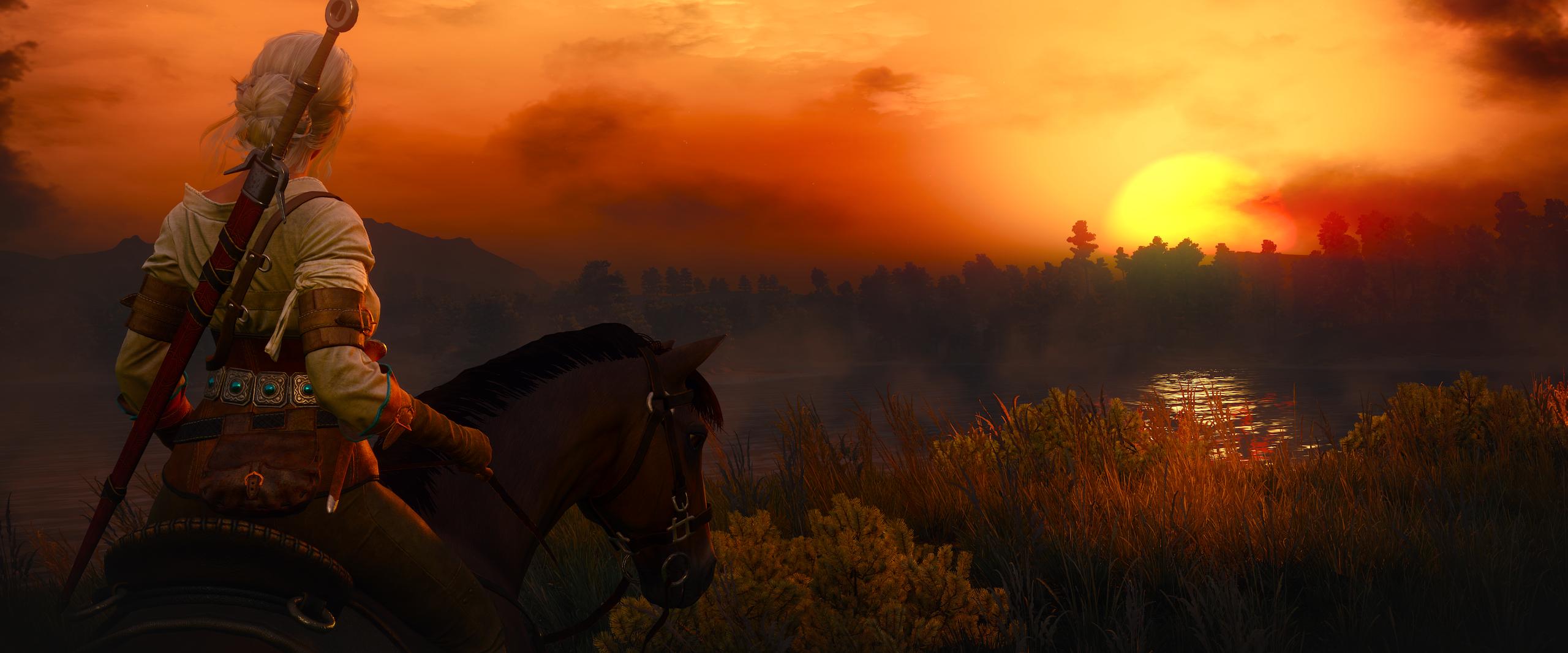 attheendoftheday.png - Witcher 3: Wild Hunt, the