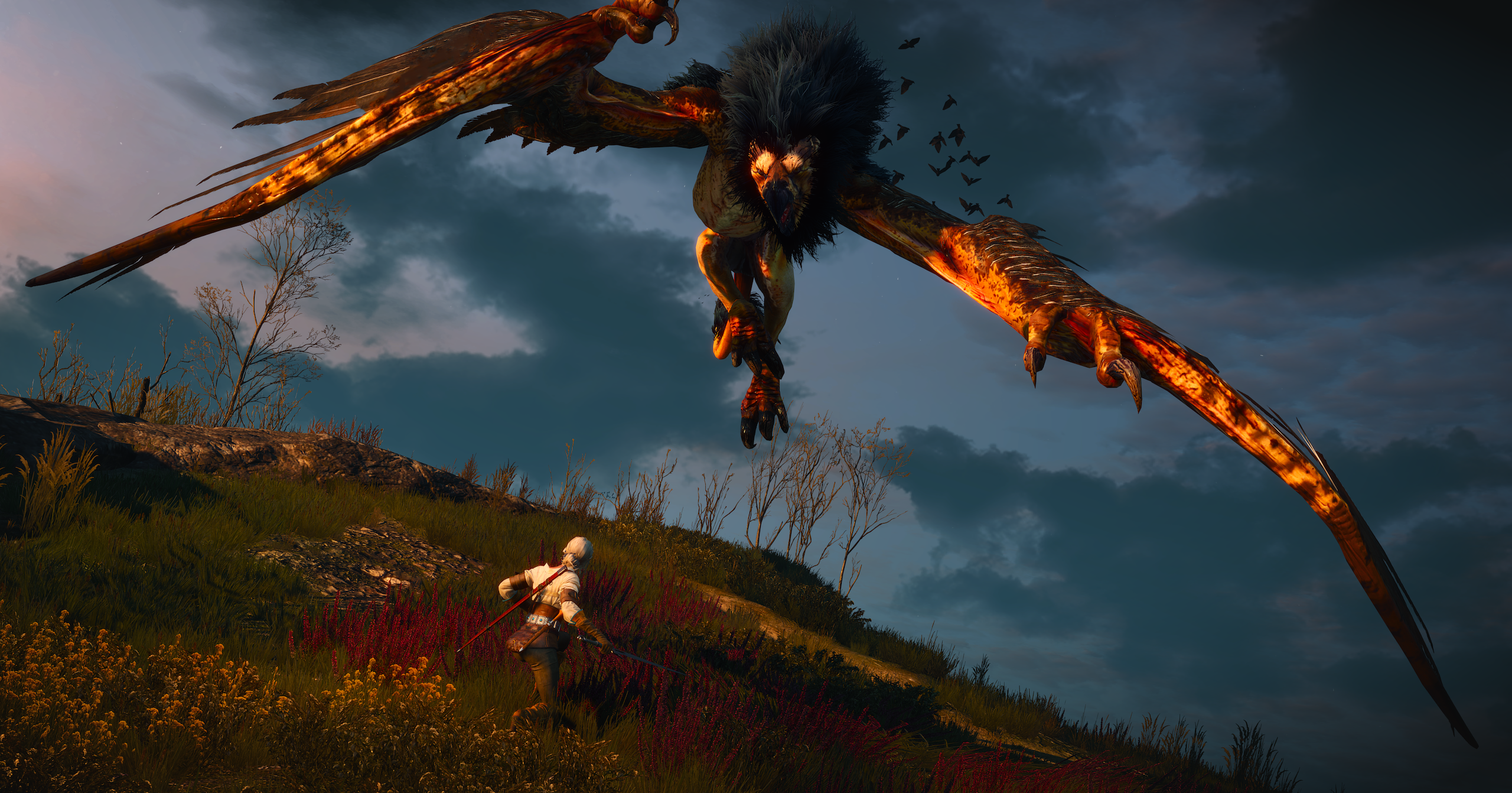 birdy.png - Witcher 3: Wild Hunt, the