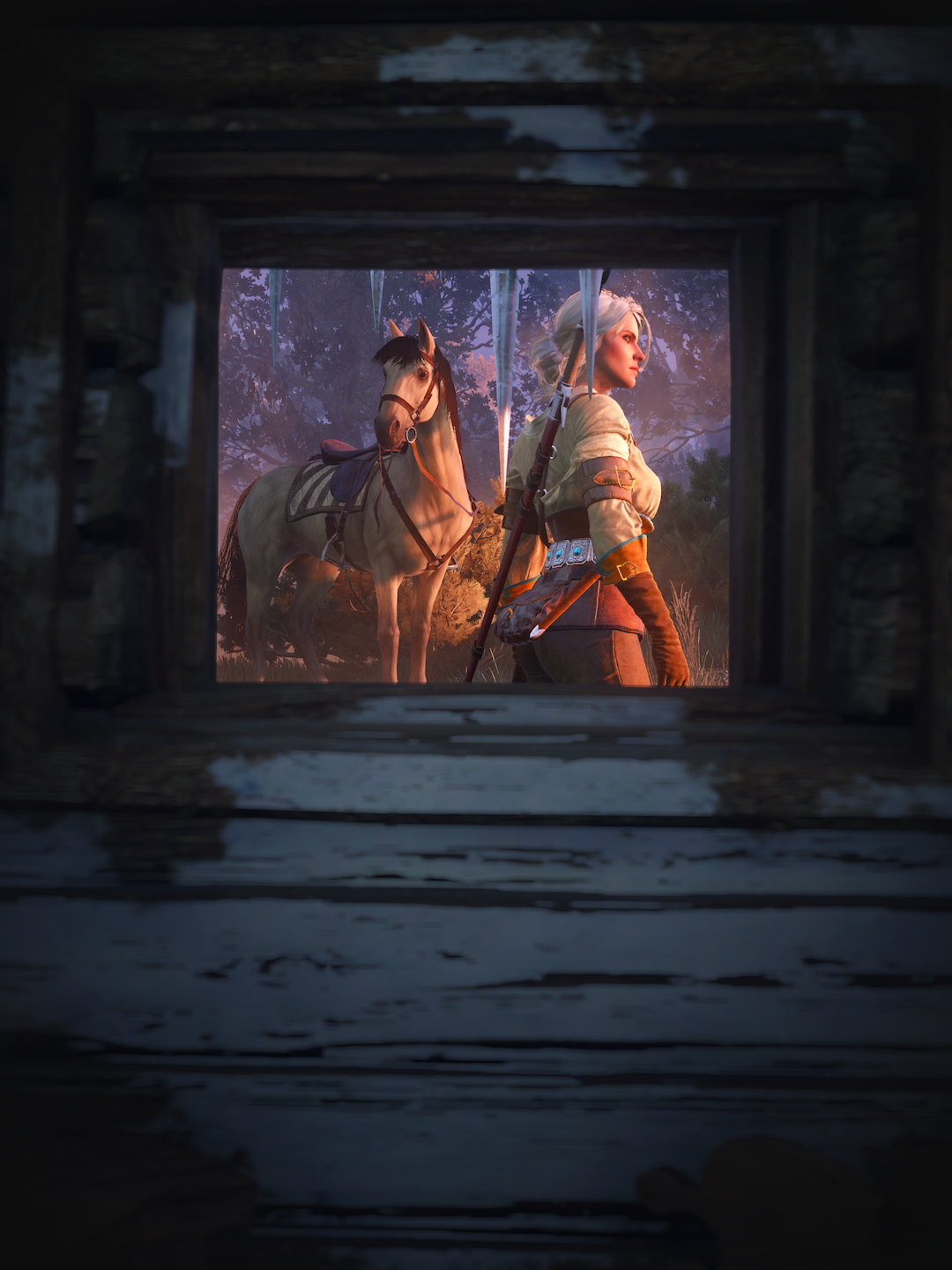 youvebeenframed.png - Witcher 3: Wild Hunt, the