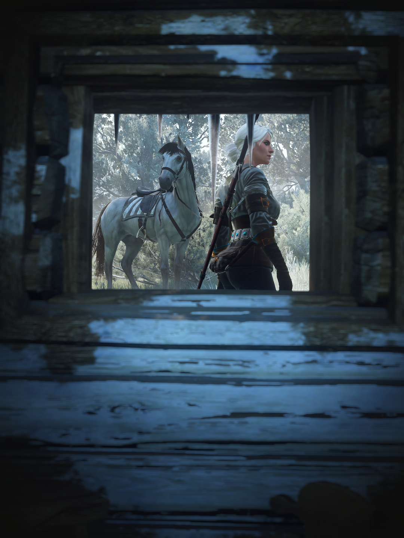 youvebeenframedalt.png - Witcher 3: Wild Hunt, the