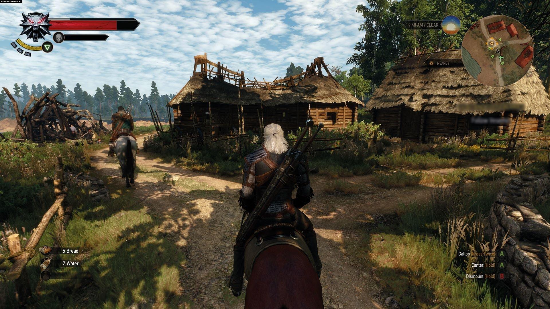 335010774.jpg - Witcher 3: Wild Hunt, the