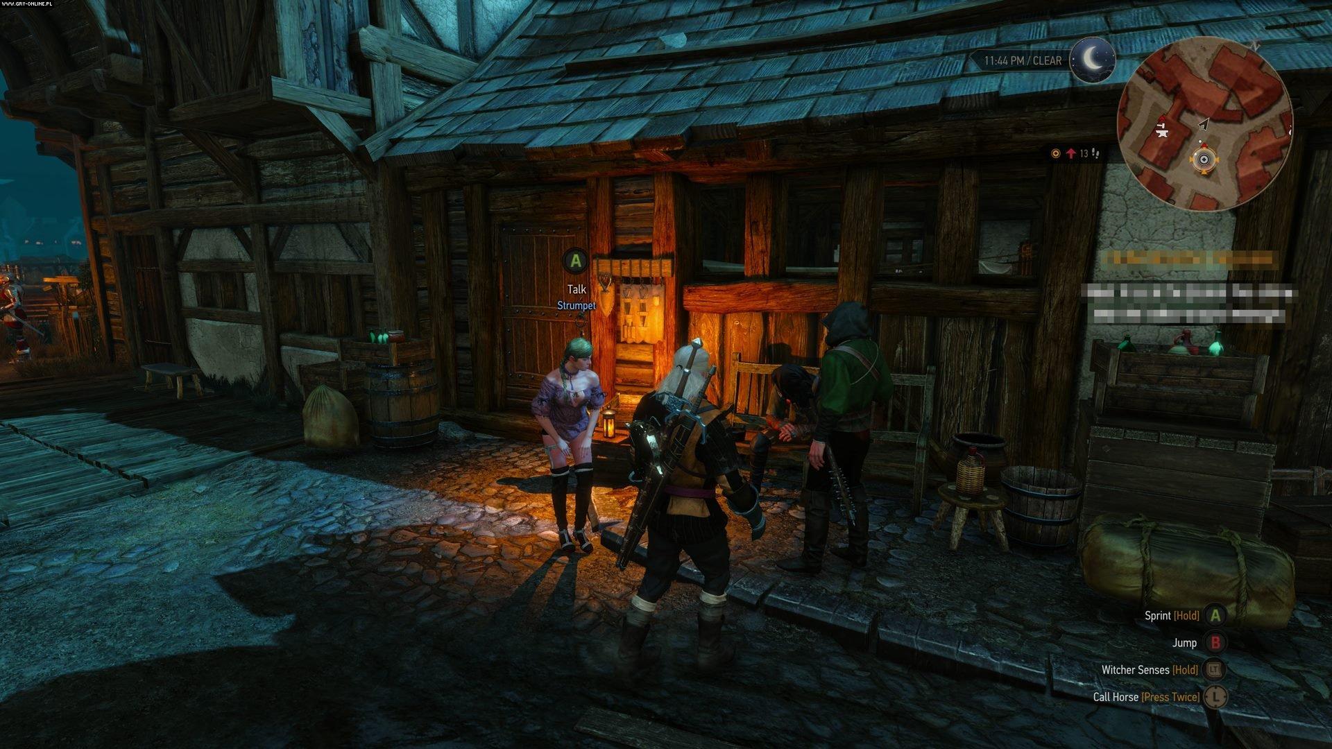 508545756.jpg - Witcher 3: Wild Hunt, the