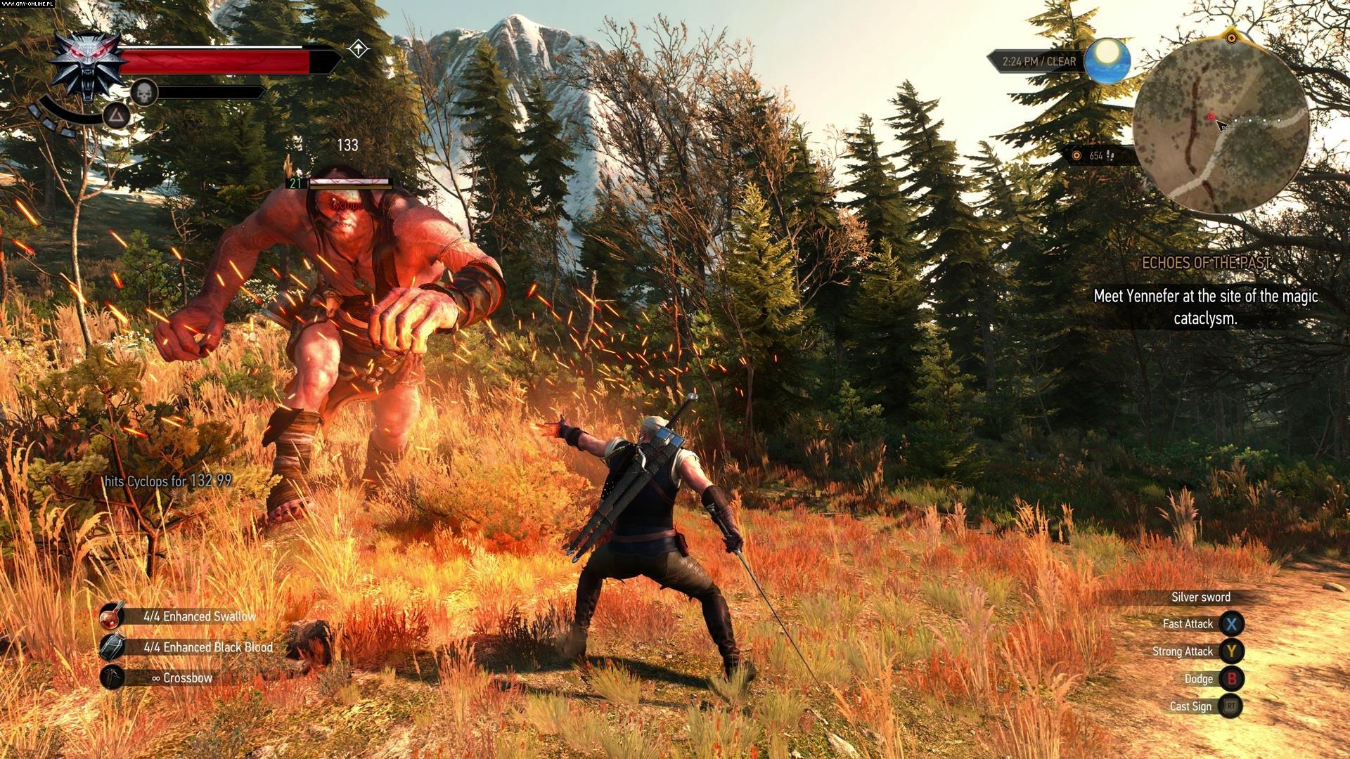 336251075.jpg - Witcher 3: Wild Hunt, the