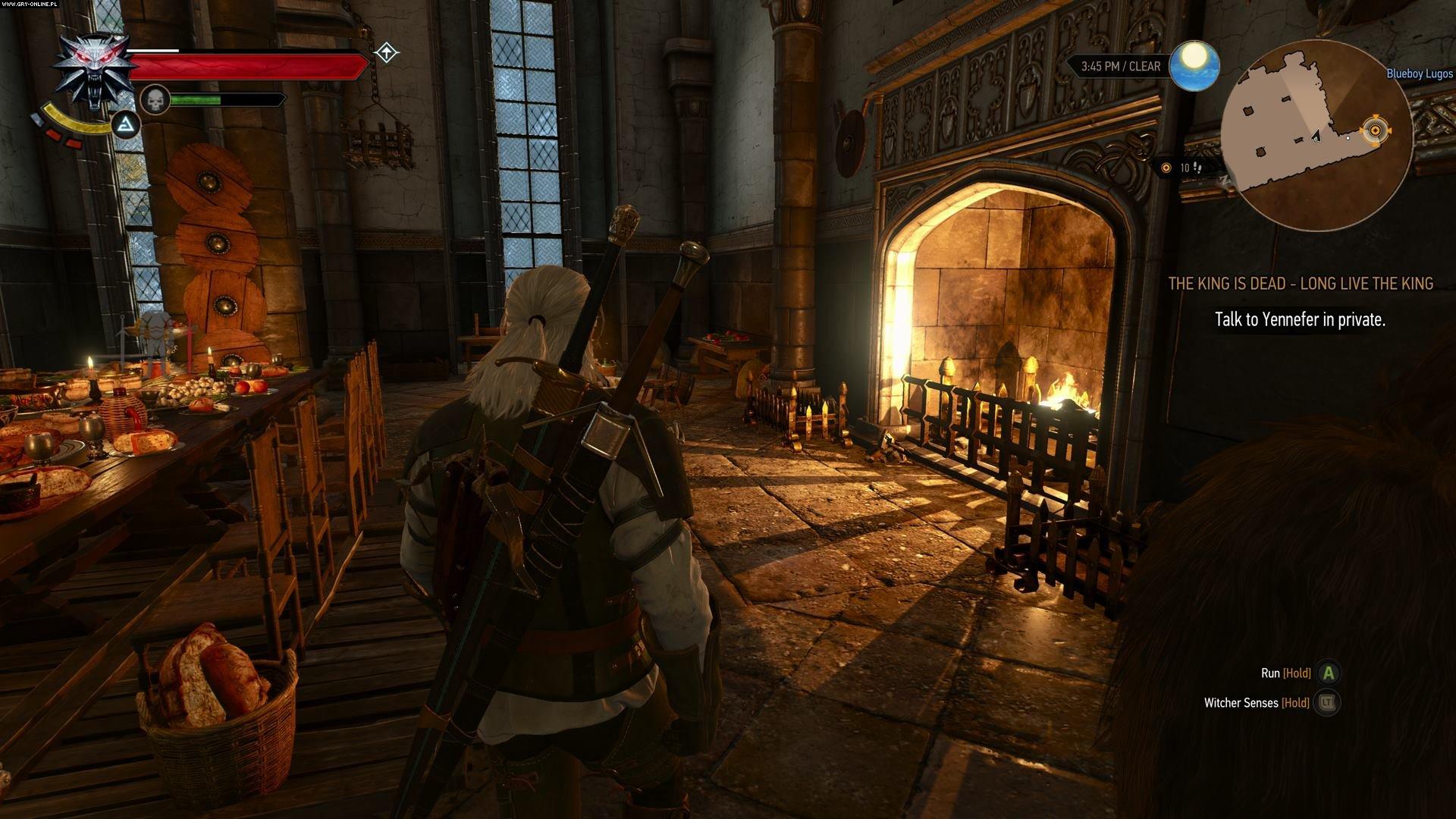 336253181.jpg - Witcher 3: Wild Hunt, the