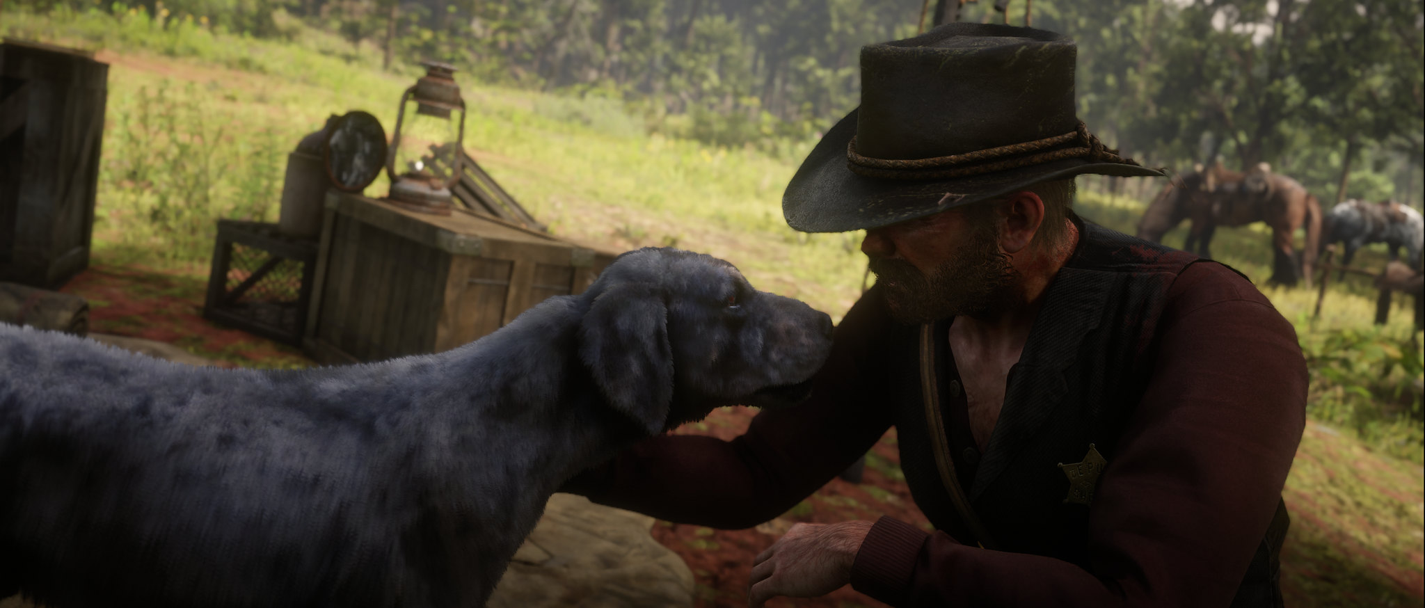 49045366858_74b0ea6e80_k.jpg - Red Dead Redemption 2