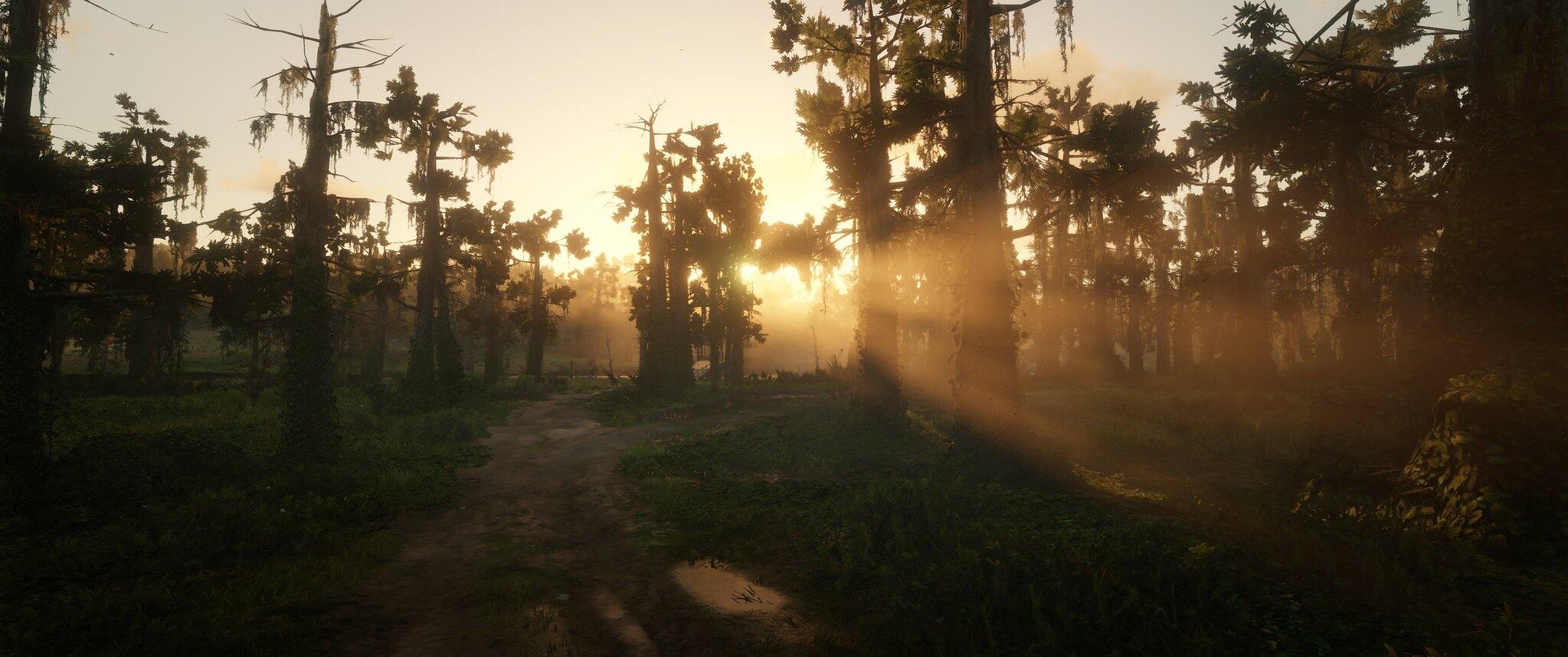 49066033338_828960c469_k.jpg - Red Dead Redemption 2