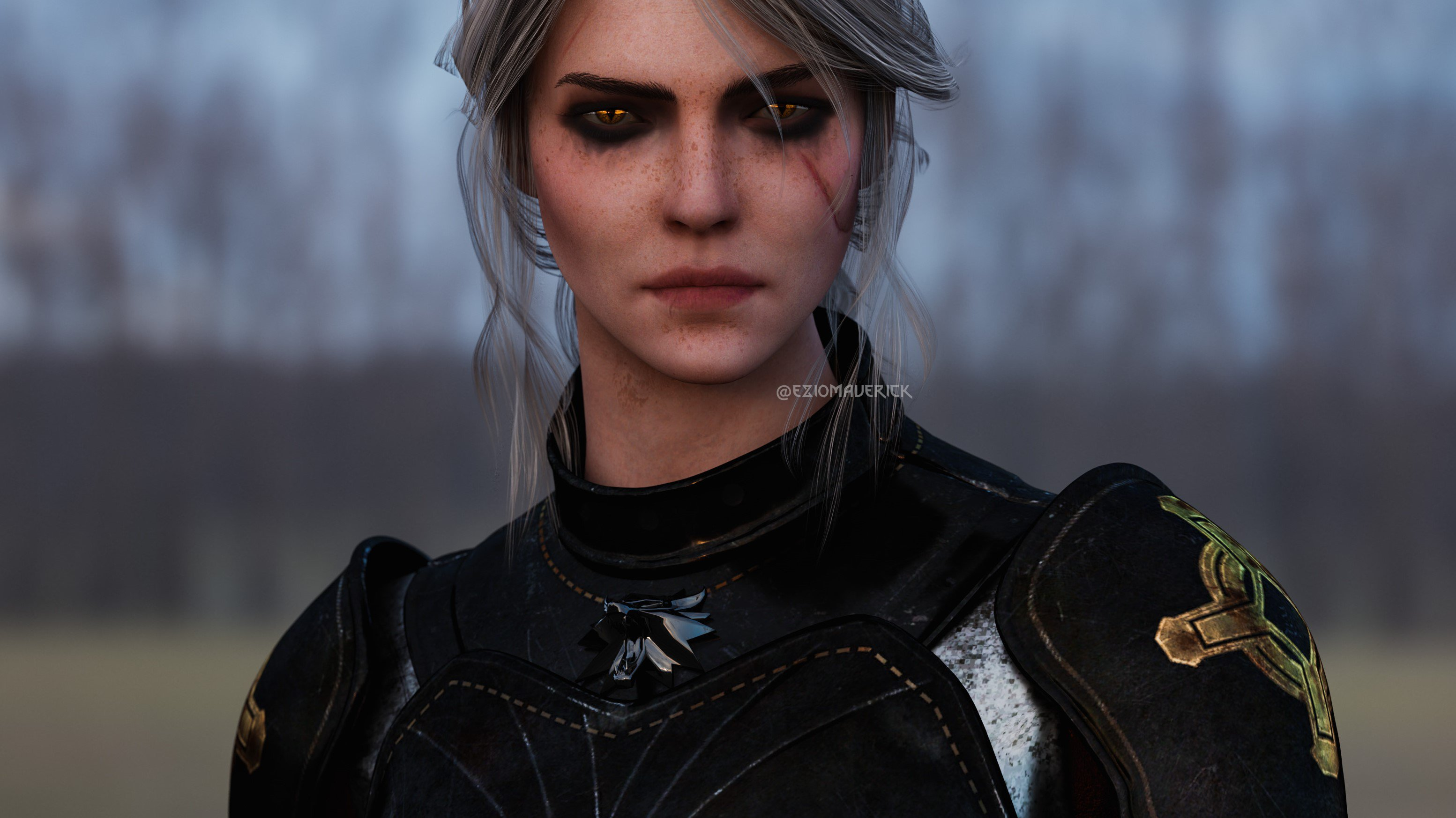 cirilla - Witcher 3: Wild Hunt, the