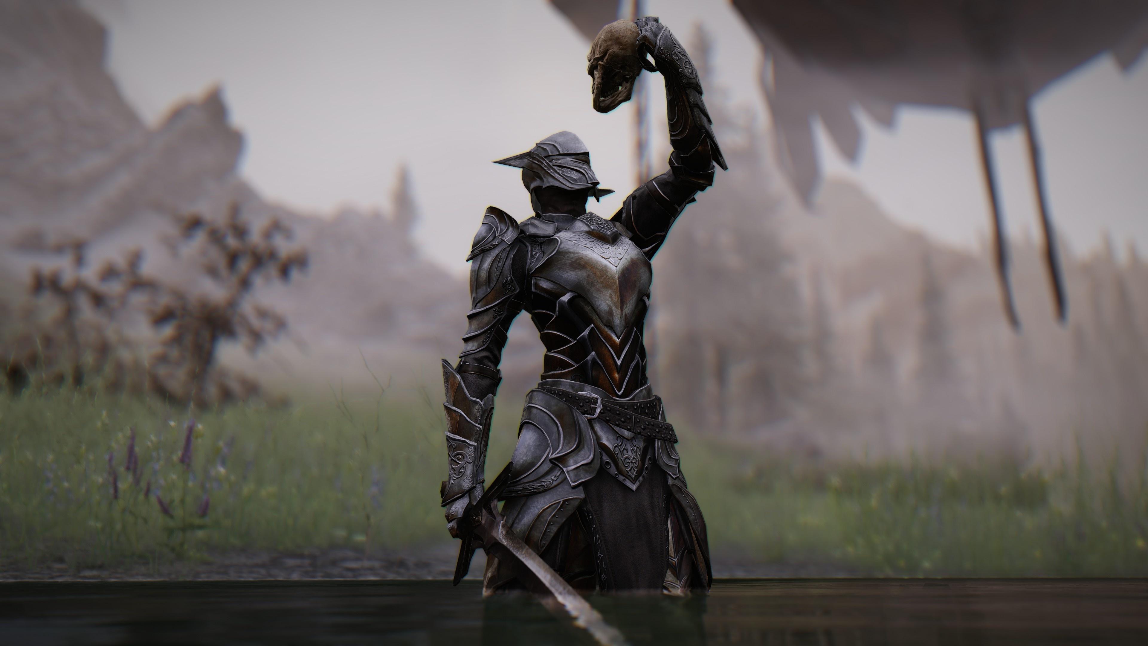 37205965-1573203167.jpg - The Elder Scrolls 5: Skyrim