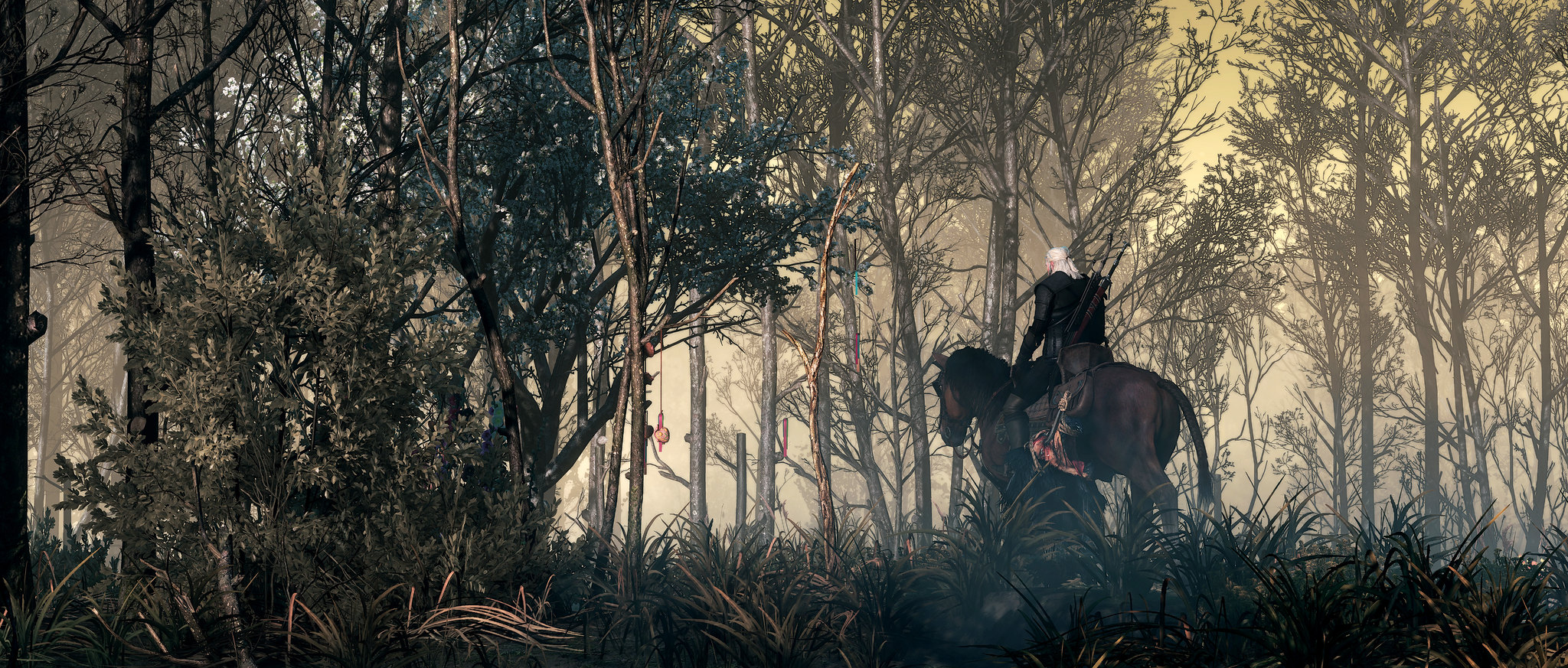 47205203201_a61130d35e_k.jpg - Witcher 3: Wild Hunt, the