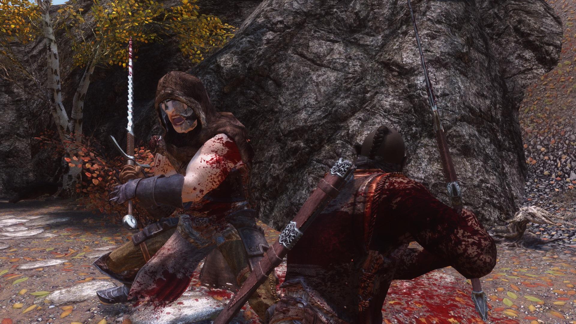 Fury - Elder Scrolls 5: Skyrim, the