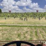Serious Sam 4: Planet Badass Serious-Sam_4_Pre_Combine