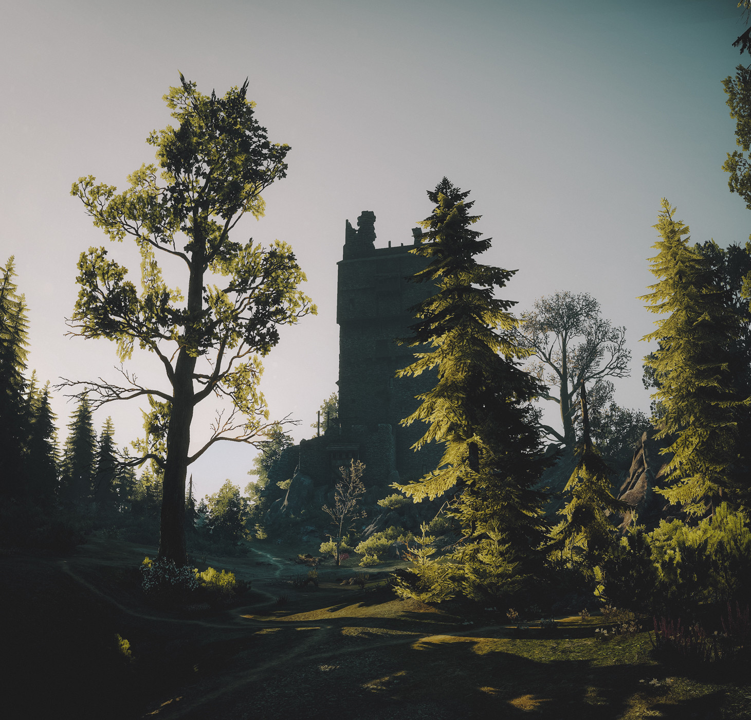 18486349241_4a65f741aa_h.jpg - The Witcher 3: Wild Hunt