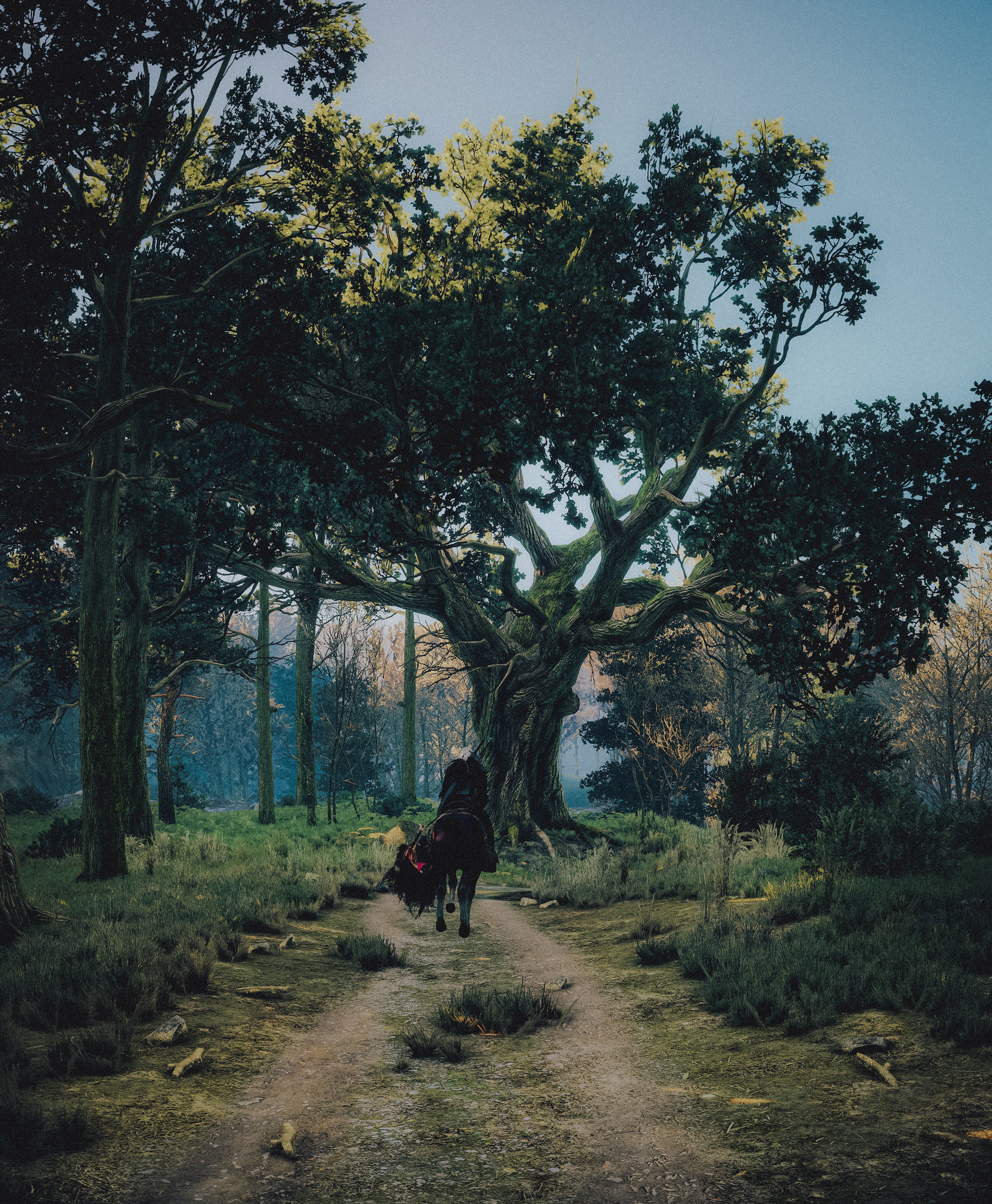 18707559721_8d6106e8d7_k.jpg - The Witcher 3: Wild Hunt