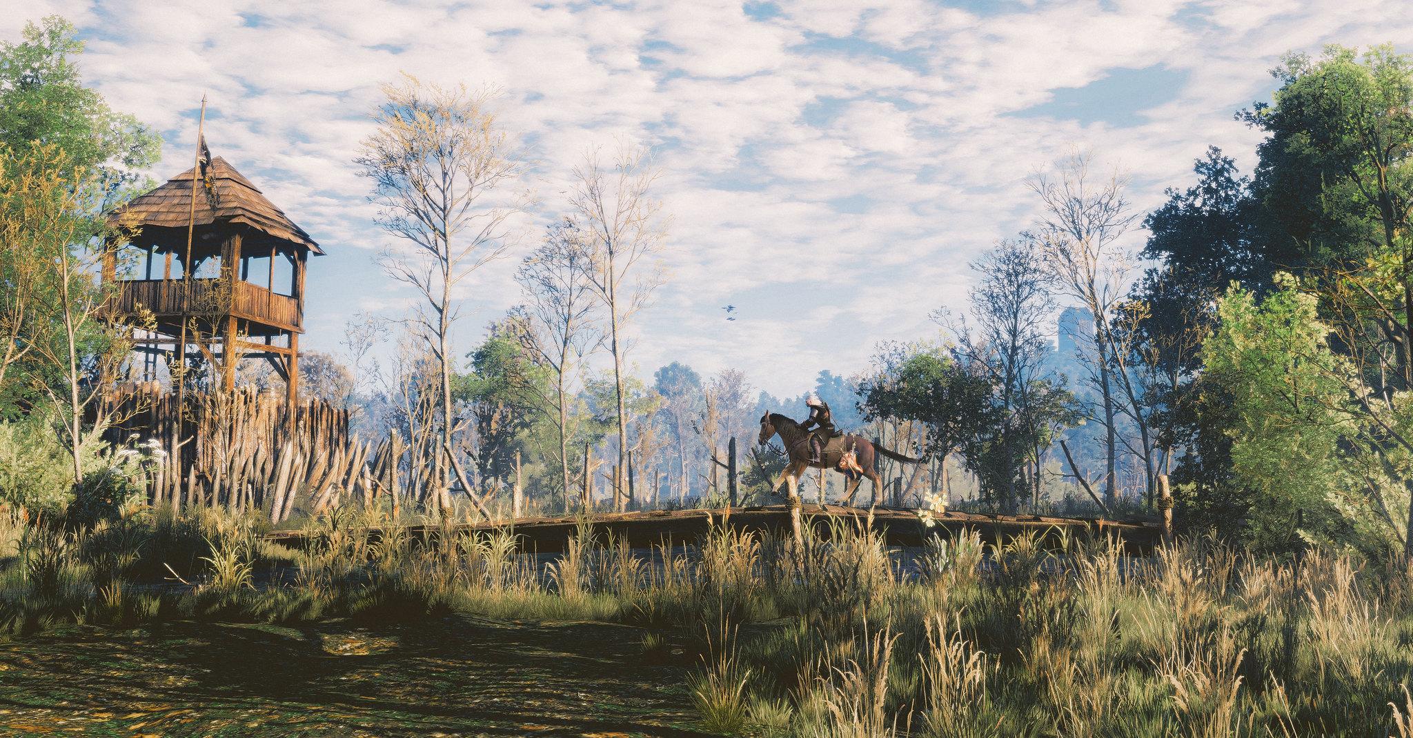 19199181511_77e67d845f_k.jpg - The Witcher 3: Wild Hunt