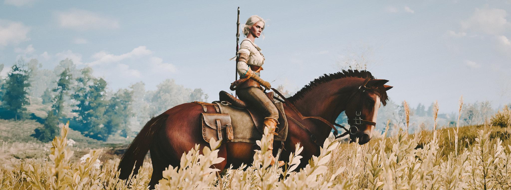 19238177869_e89d541364_k.jpg - The Witcher 3: Wild Hunt