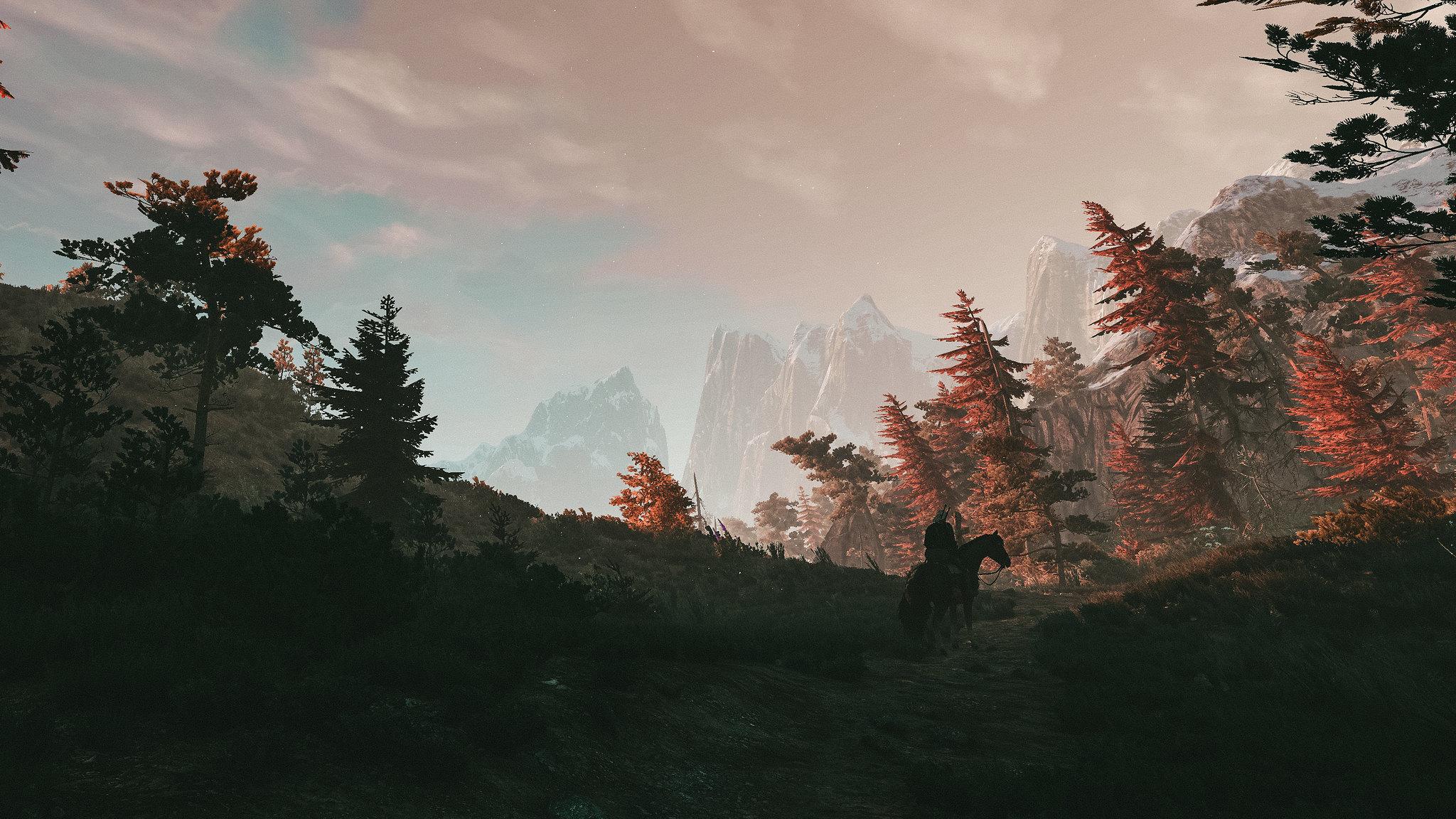 27109390966_8c6bbd40ec_k.jpg - The Witcher 3: Wild Hunt