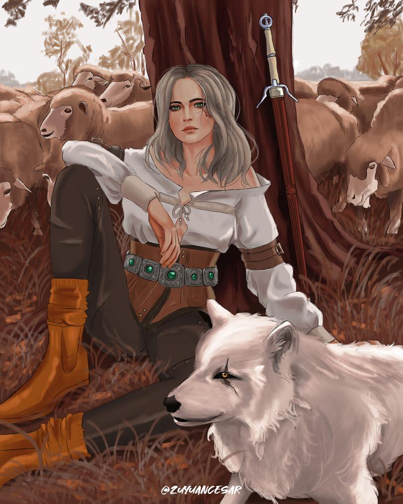 The-Witcher-фэндомы-Цири-Witcher-Персонажи-5983184.jpeg - The Witcher 3: Wild Hunt