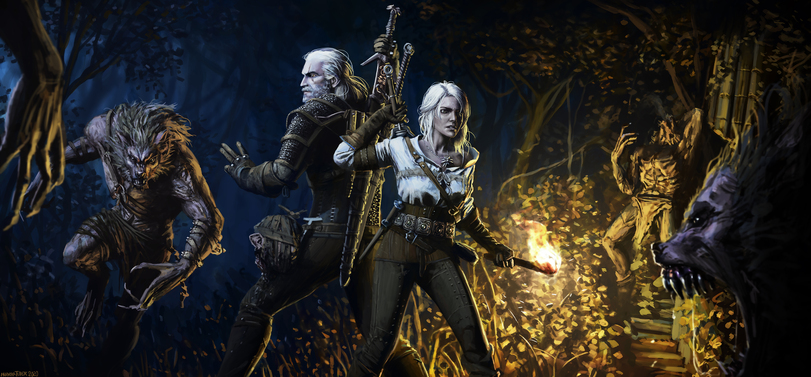 The-Witcher-фэндомы-Цири-Witcher-Персонажи-5985675.jpeg - The Witcher 3: Wild Hunt