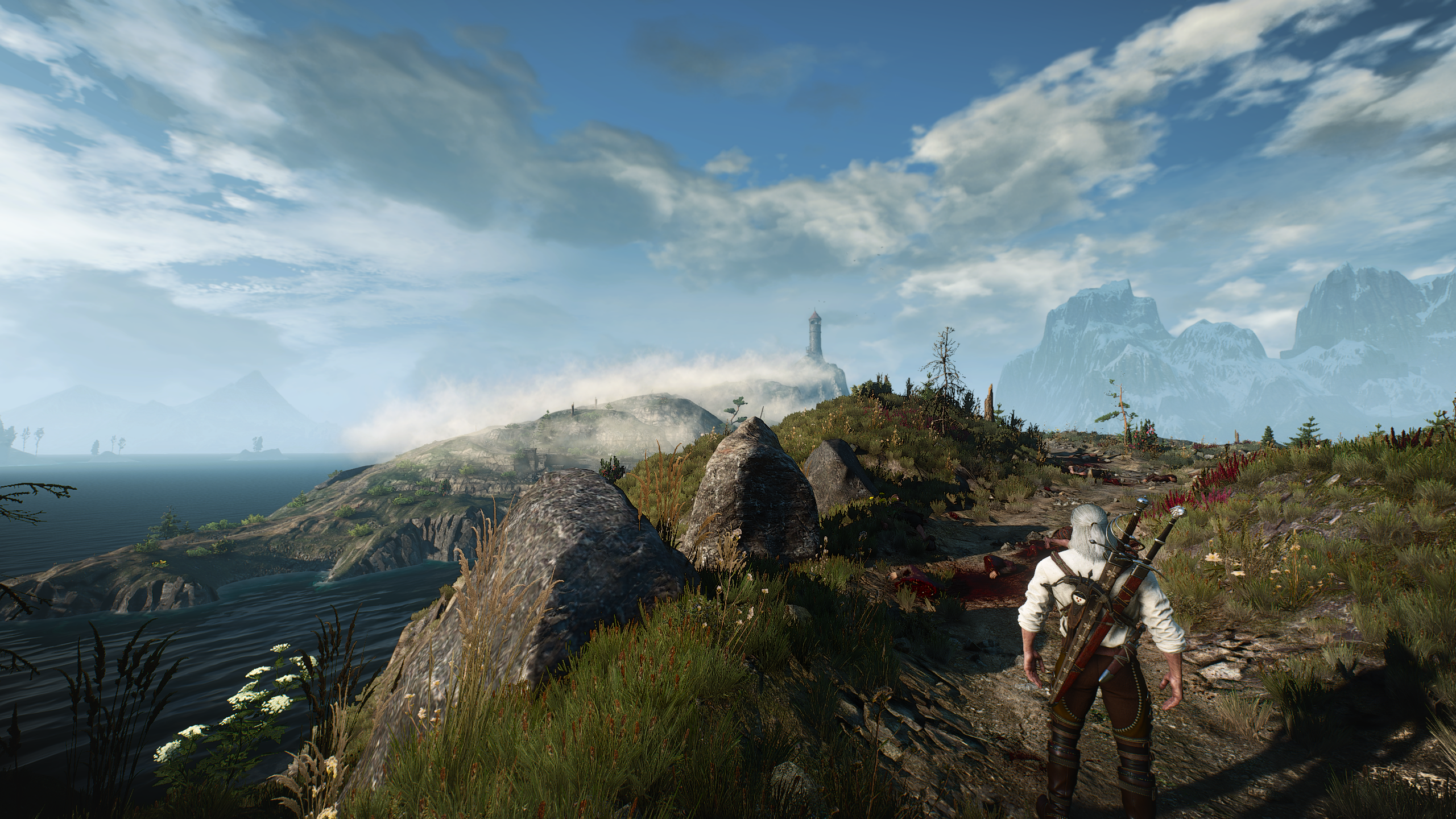 1 (2).png - The Witcher 3: Wild Hunt
