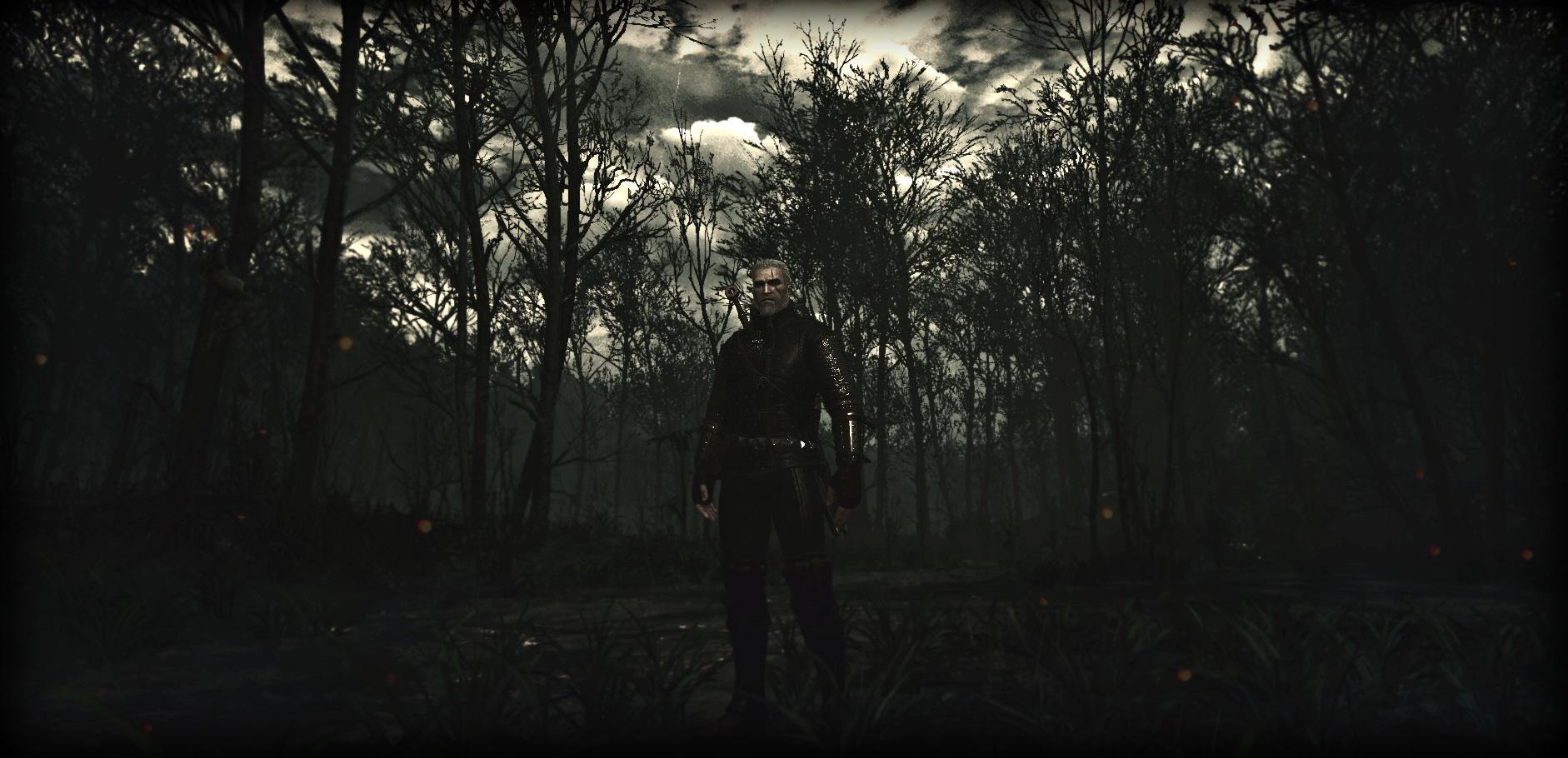 witcher3 2015-07-21 23-15-33-562.jpg - The Witcher 3: Wild Hunt