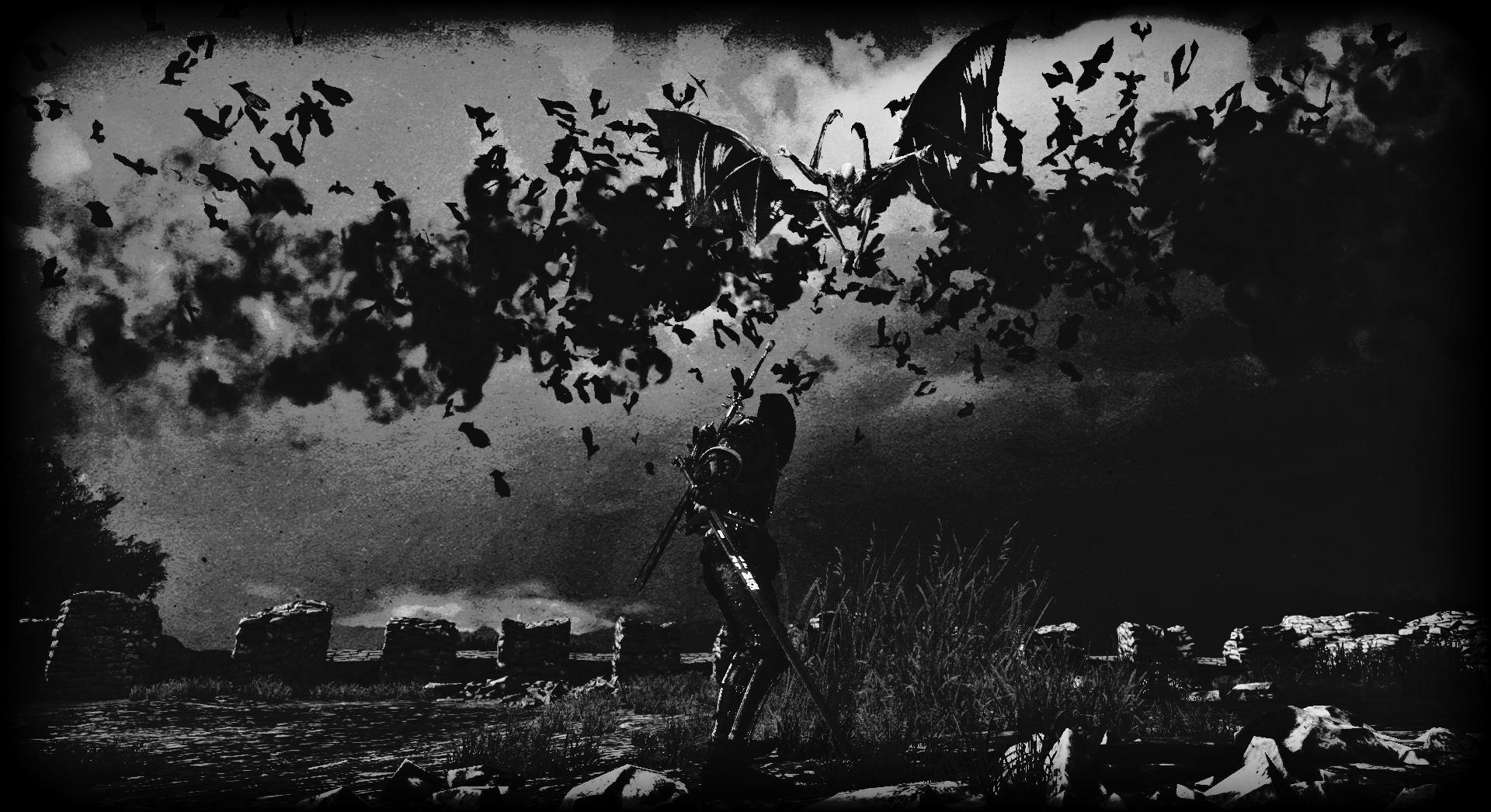 witcher3 2016-06-12 23-55-36-154.jpg - The Witcher 3: Wild Hunt