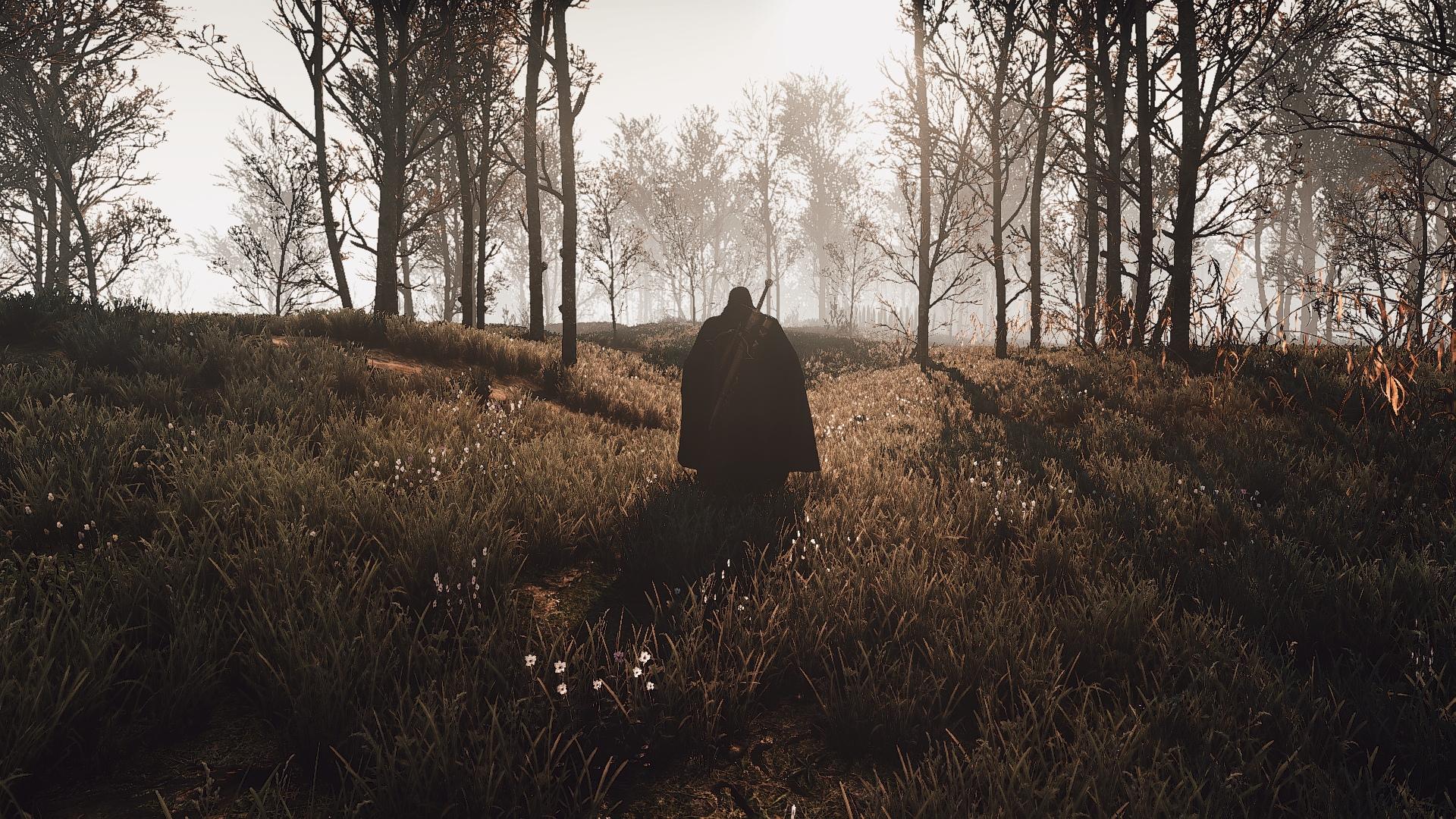 xxCO40WNuGM.jpg - The Witcher 3: Wild Hunt